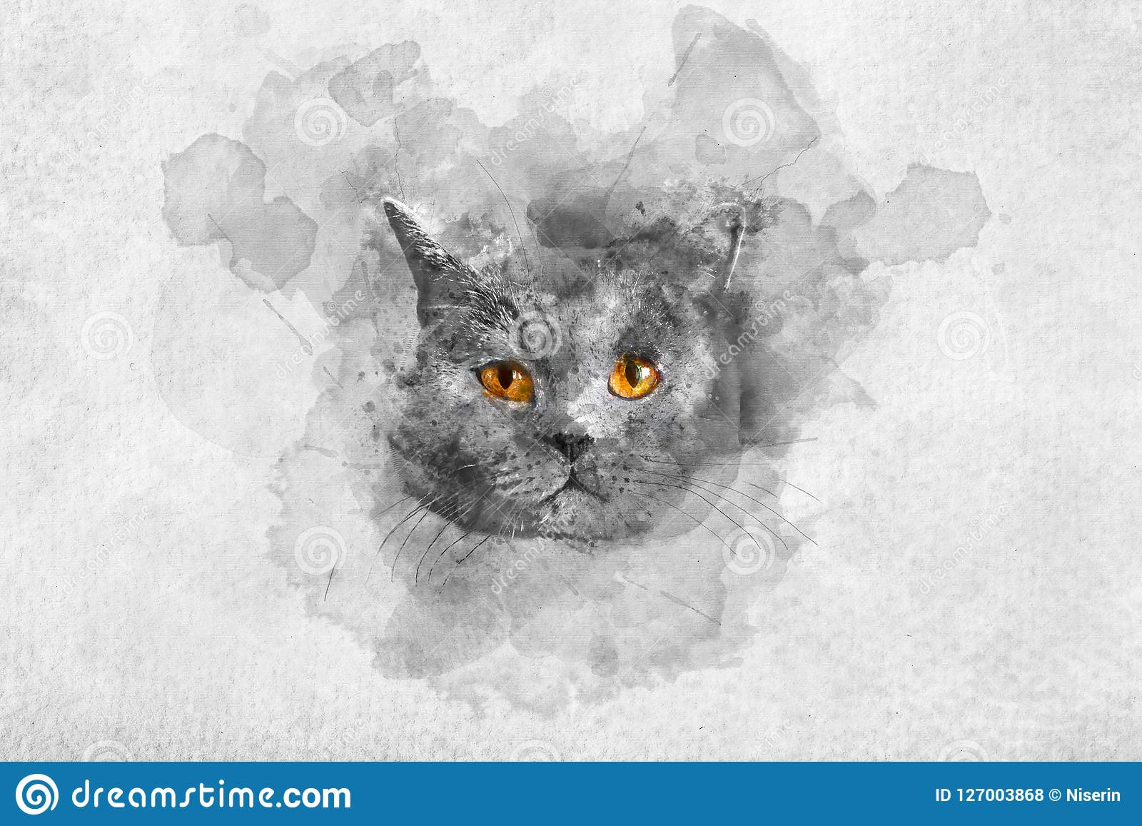 Portrait britannique mignon d aquarelle du ` s de chat de shorthair
