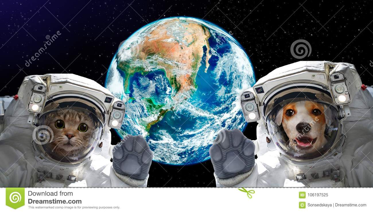 Portrait of a cat and dog astronauts on the background of the globe
