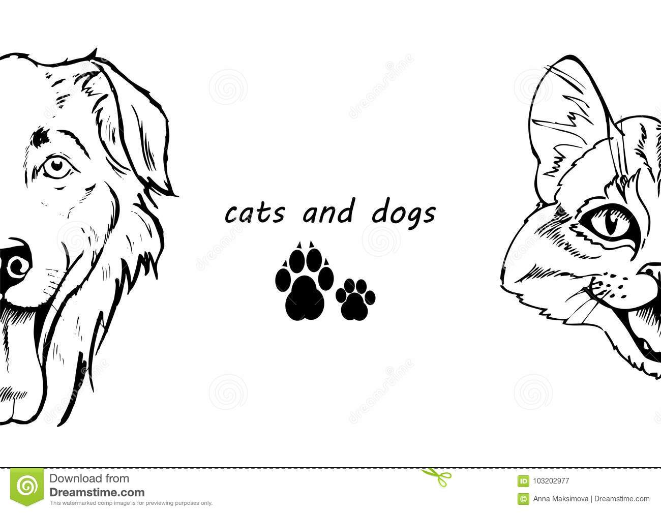 Portrait Of Dog And Cat Black And White Stock Vector Illustration