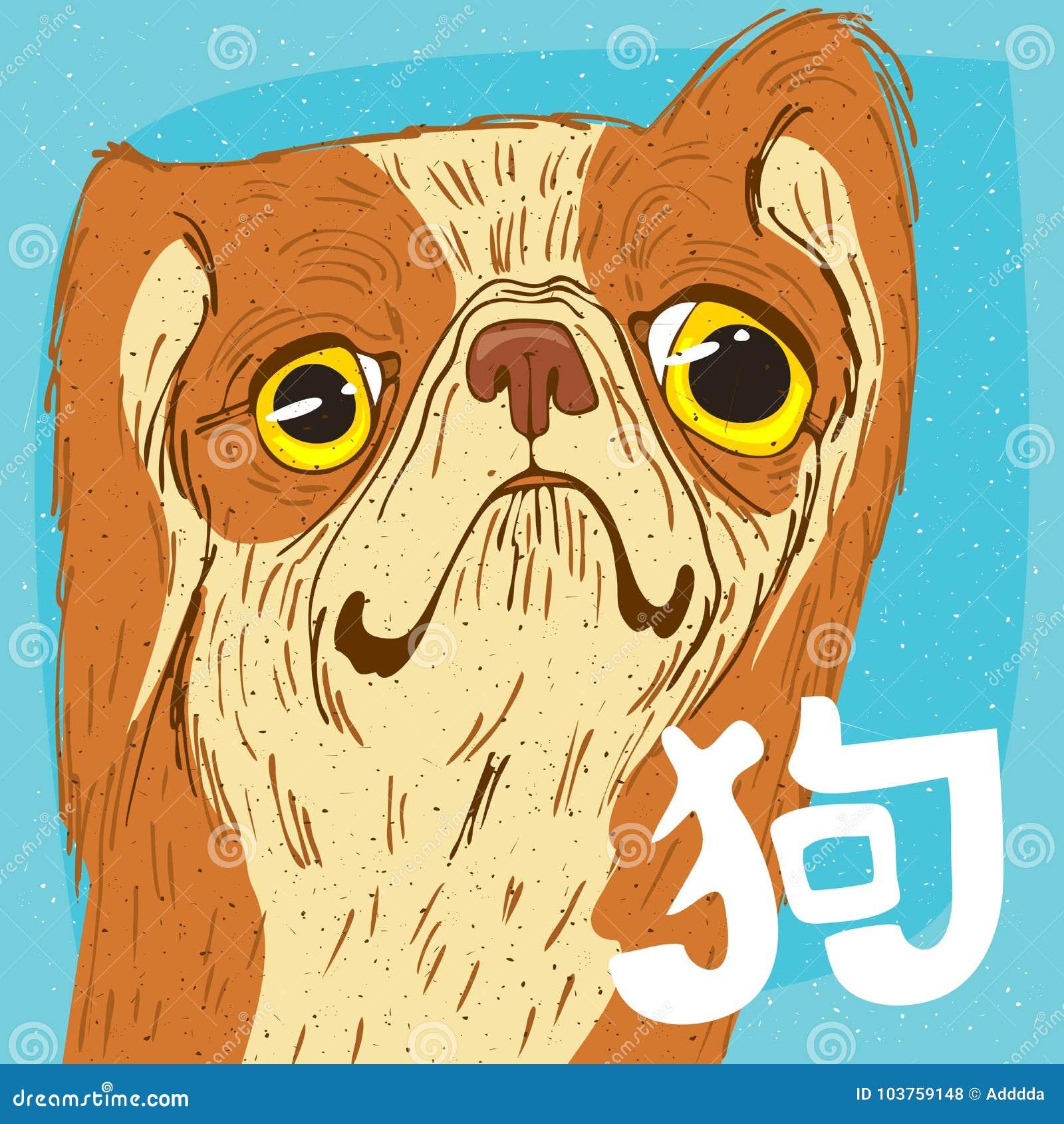 Portrait Drole De Pekinois Ou De Pekin Lion Dog Illustration De