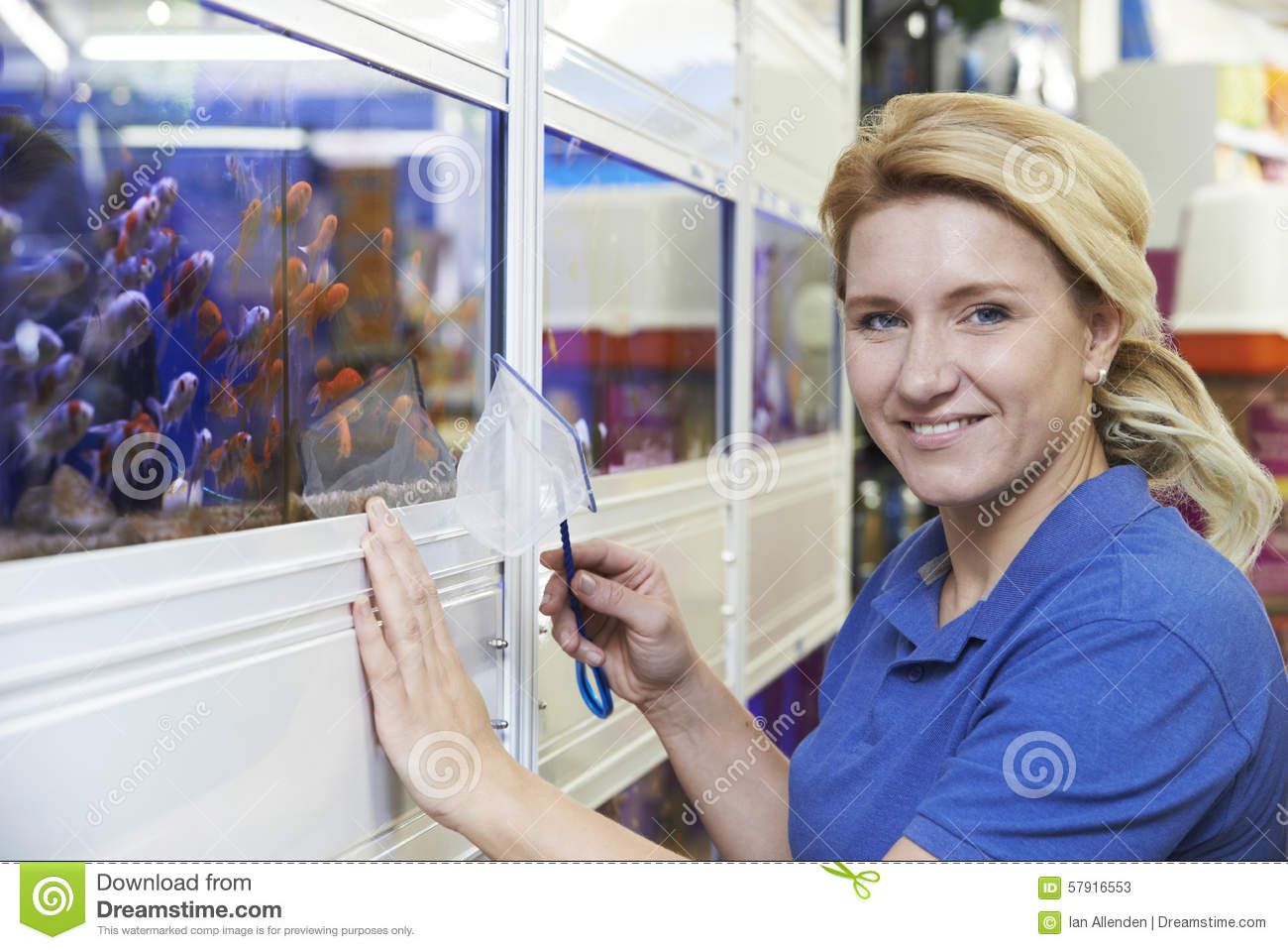 Portrait of female employee in pet store stock image for Fish and pet store