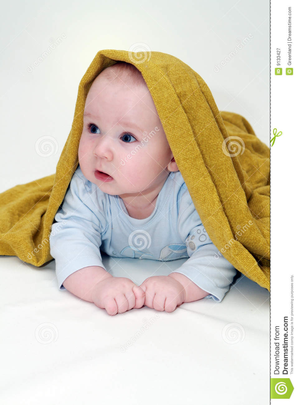 portrait of five months old sweet baby boy stock image - image of