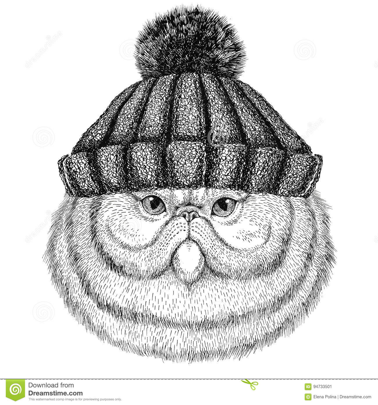 Portrait of fluffy persian cat wearing winter knitted hat