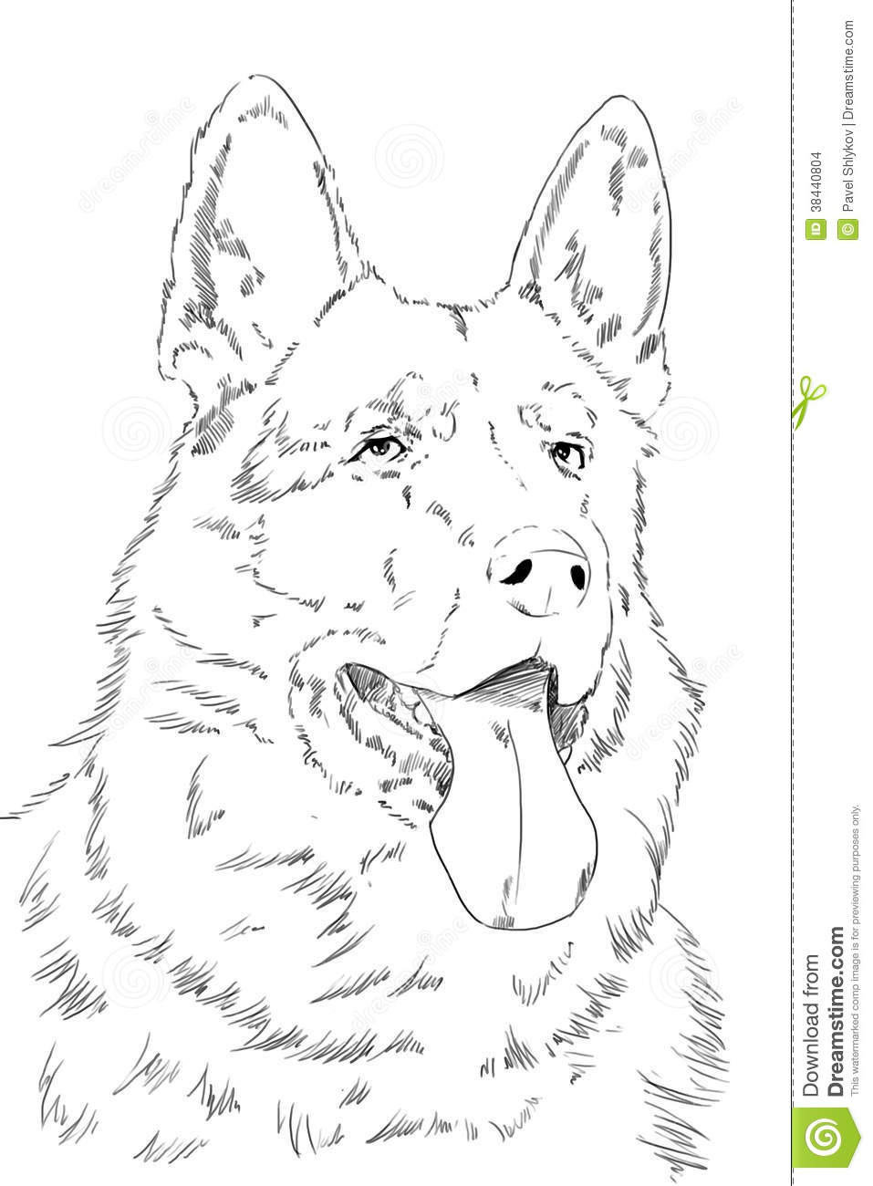 German shepherd to color printables pictures to pin on for German shepherd coloring pages printable