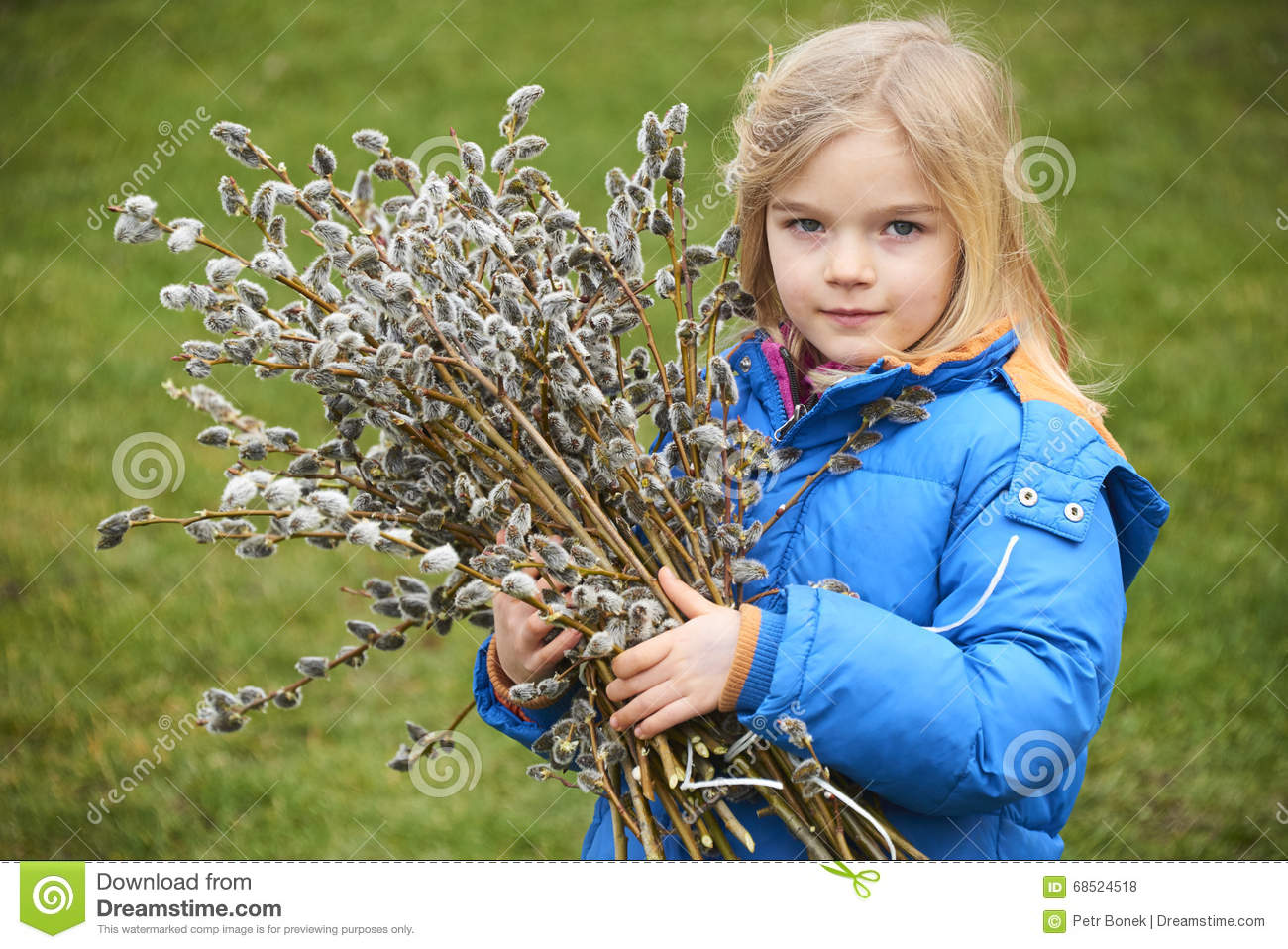 child girl finger pussy Portrait Girl with a branch of pussy willow. Salix. Easter traditions. Royalty Free
