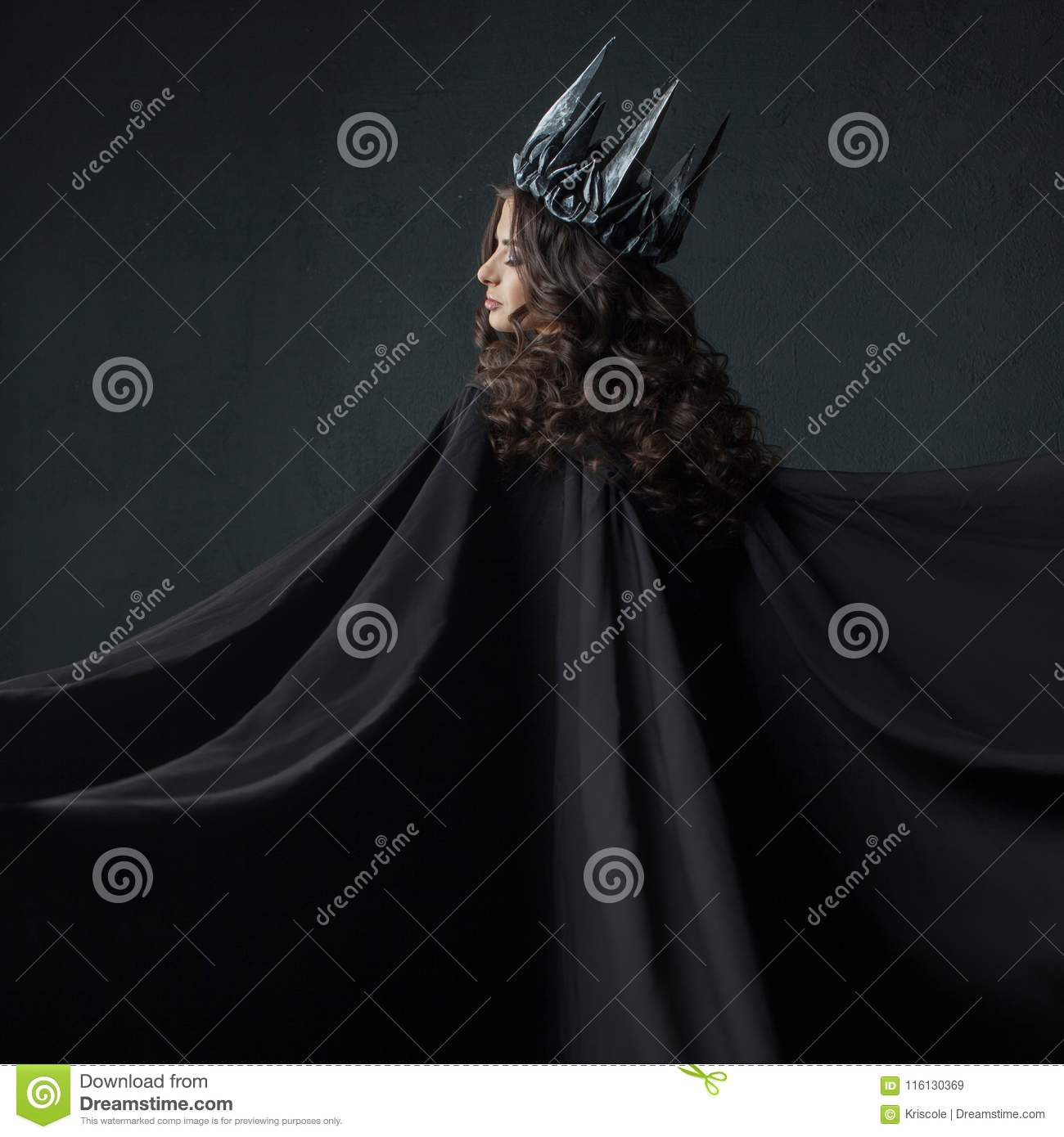 Portrait of a Gothic Princess. Gothic Queen. Image on Halloween. Young beautiful woman in black