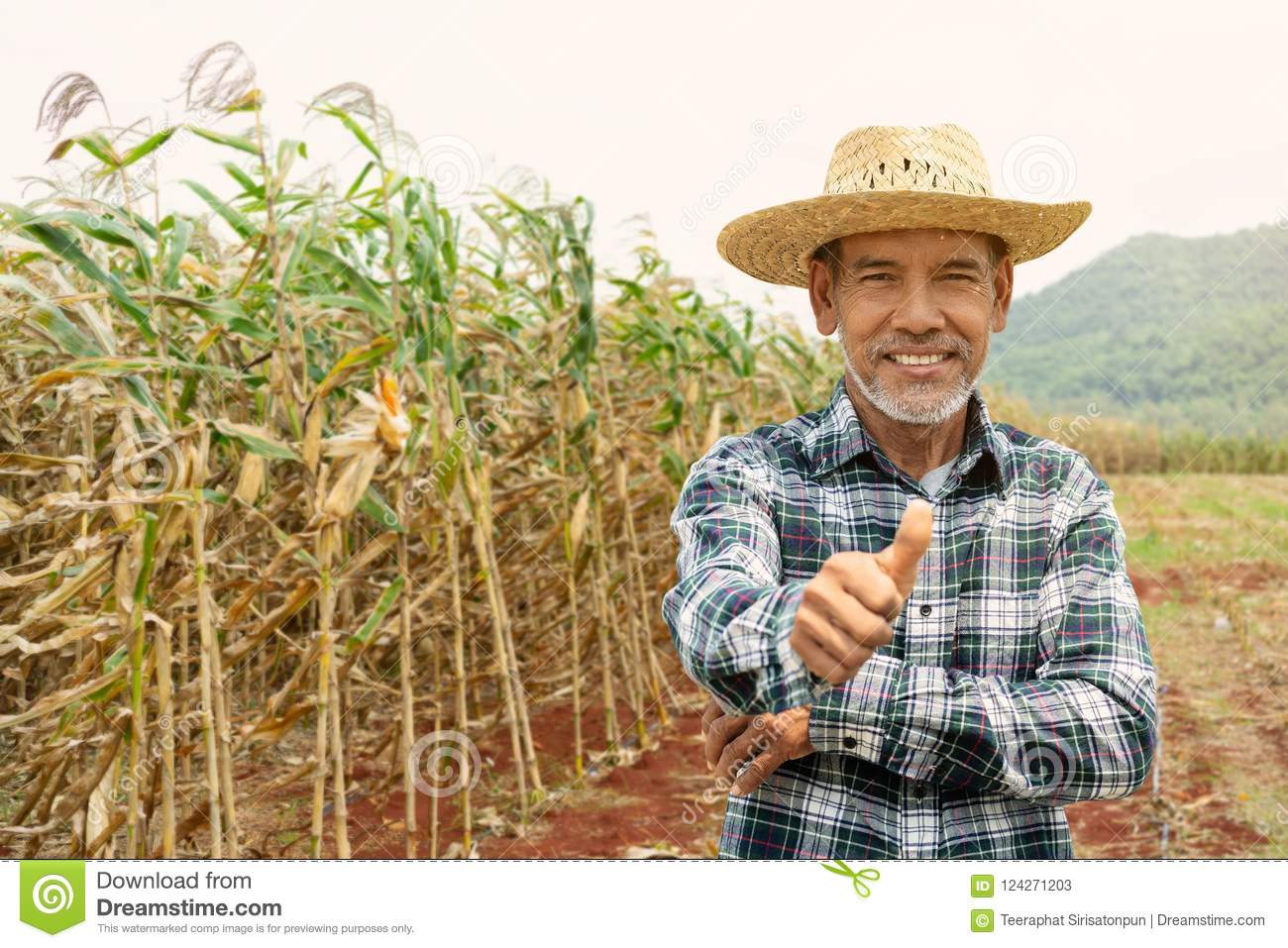 Portrait happy mature older man is smiling. Old senior farmer with white beard thumb up feeling confident.