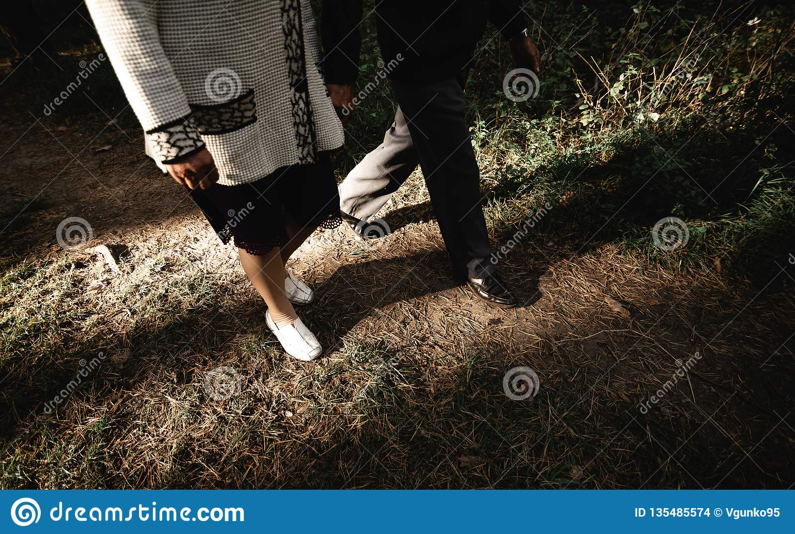 Portrait of a happy senior couple in park. Horizontal image