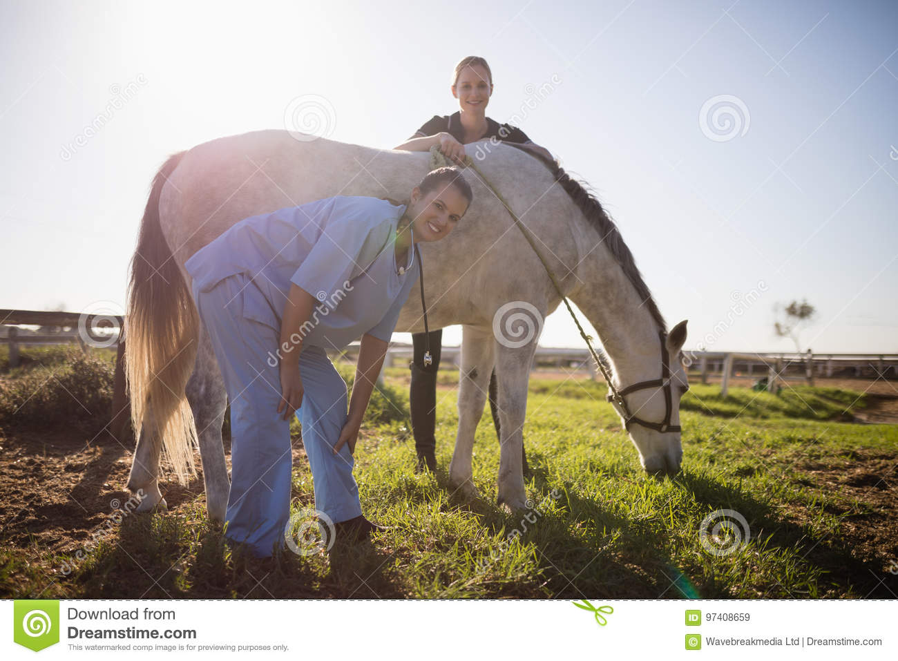 Portrait of jockey and vet standing by horse at barn