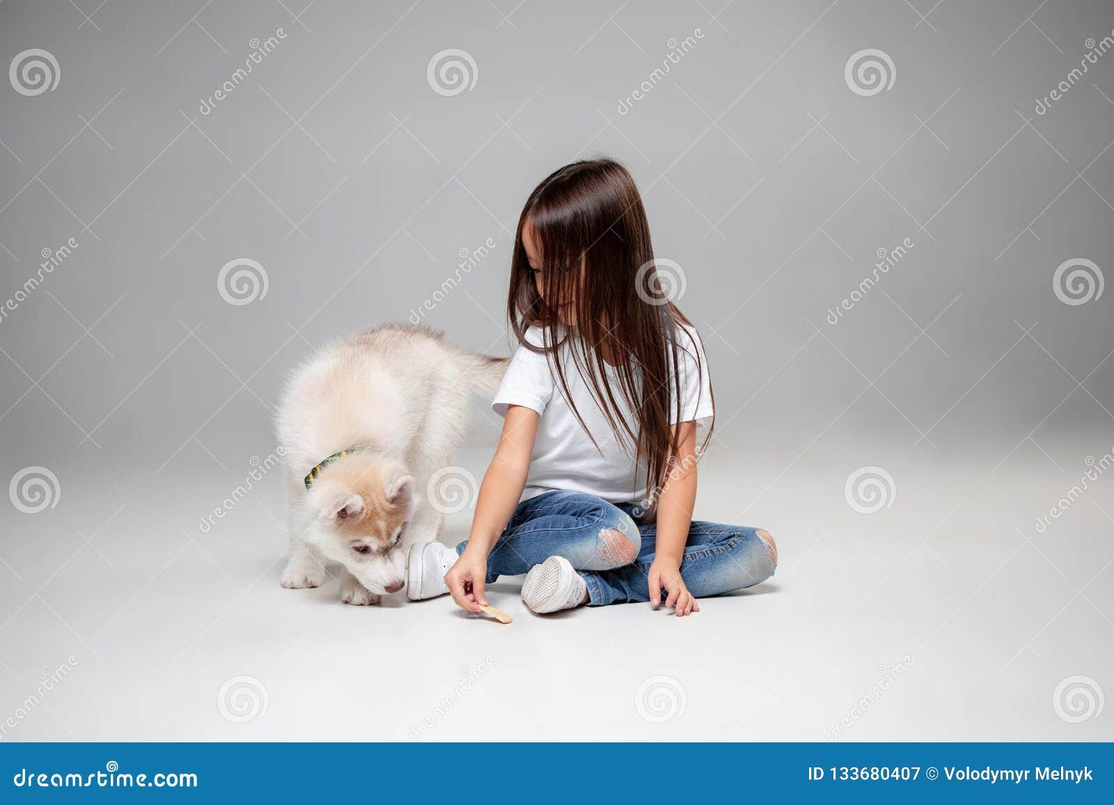Portrait of a joyful little girl having fun with siberian husky puppy on the floor at studio