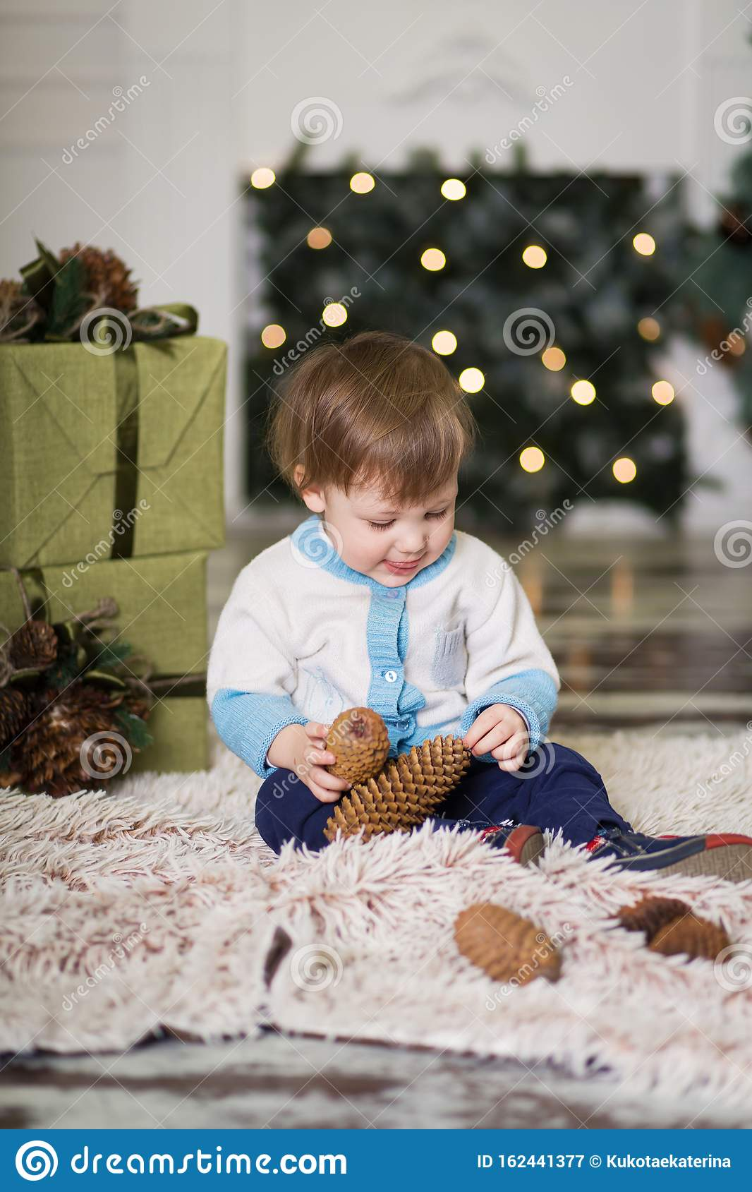 Portrait Of A Little Boy Play With Pine Cones Near A ...