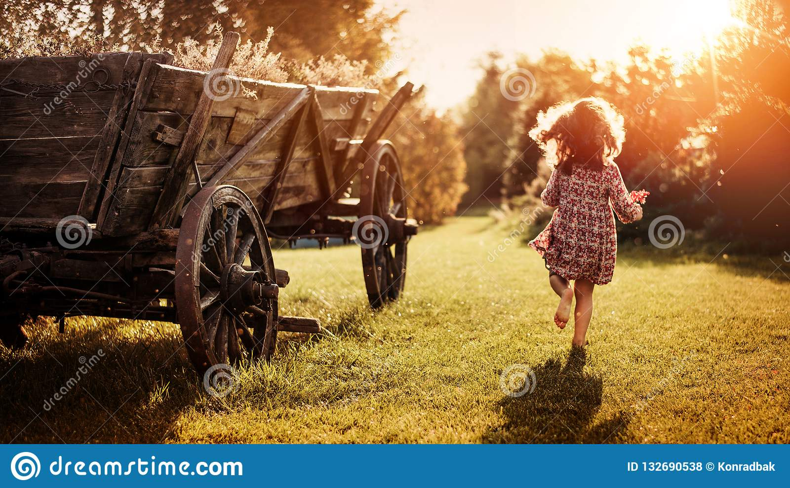 Portrait of a little girl on a farm