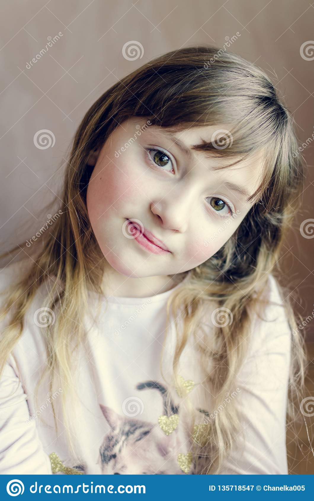 Portrait Of The Little Pretty Girl Stock Image Image Of Hair