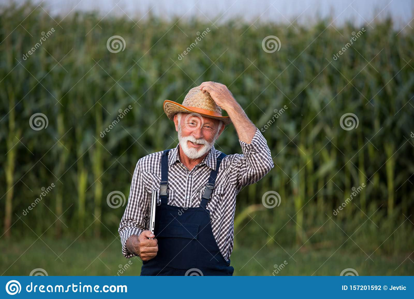 Old Young In The Farm Porn Videogalleries portrait of old farmer with white beard stock photo - image