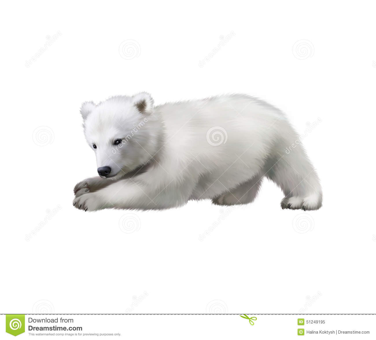 Portrait of a polar bear baby playing in the snow
