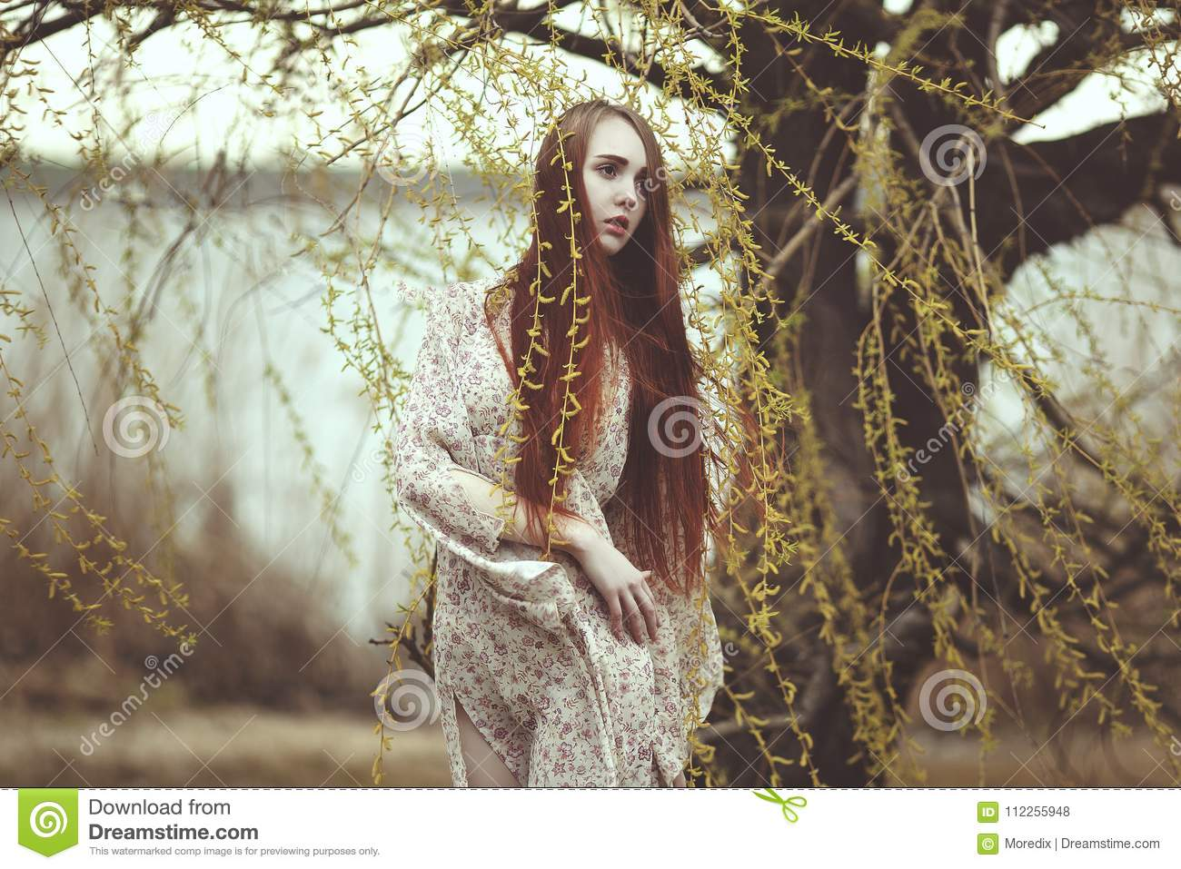 Girl Willow Stock Images - Download 1 c86ee49e9
