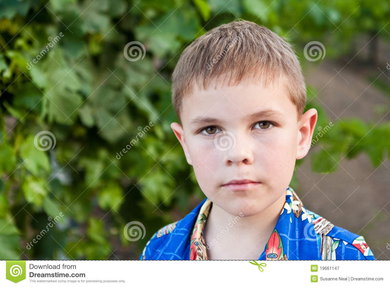 Portrait Of Serious 8 Year Old Boy Stock Image Image