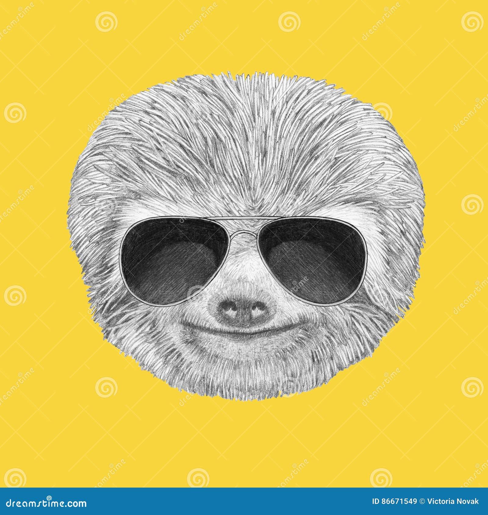 portrait of sloth with sunglasses stock illustration illustration