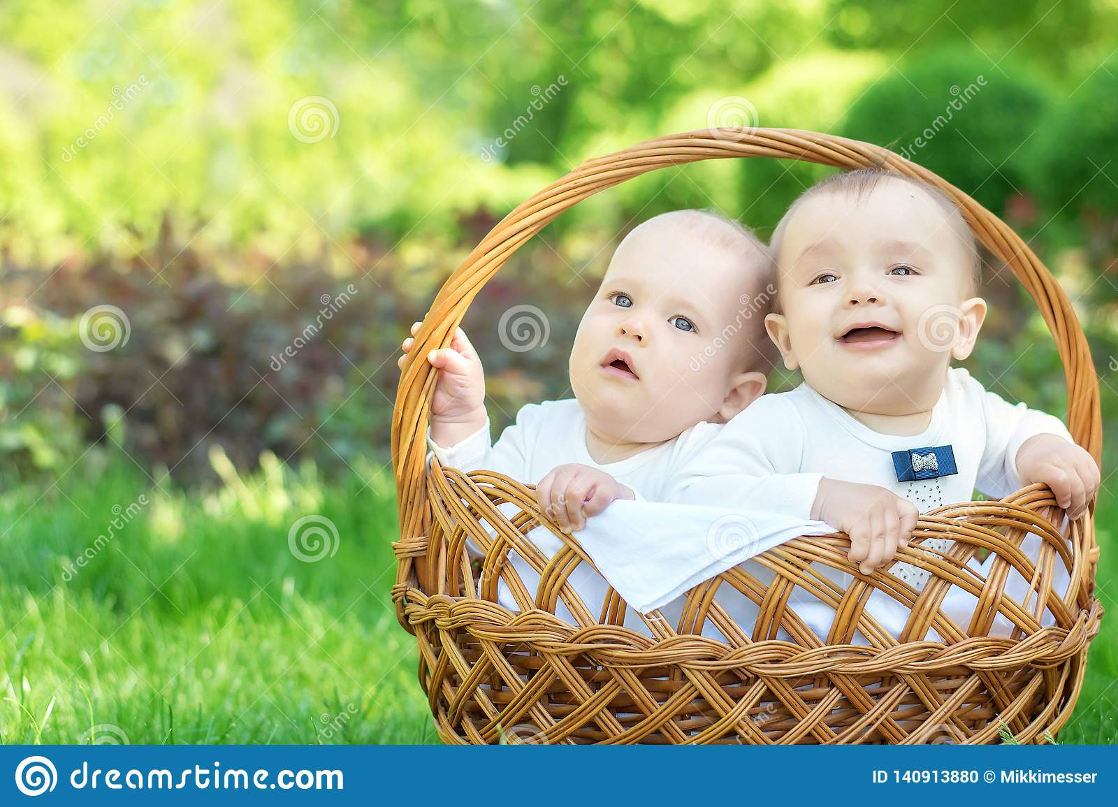 Outdoor activity for families with kids: Portrait of two little infant boys sitting in wicker basket on grass on picnic