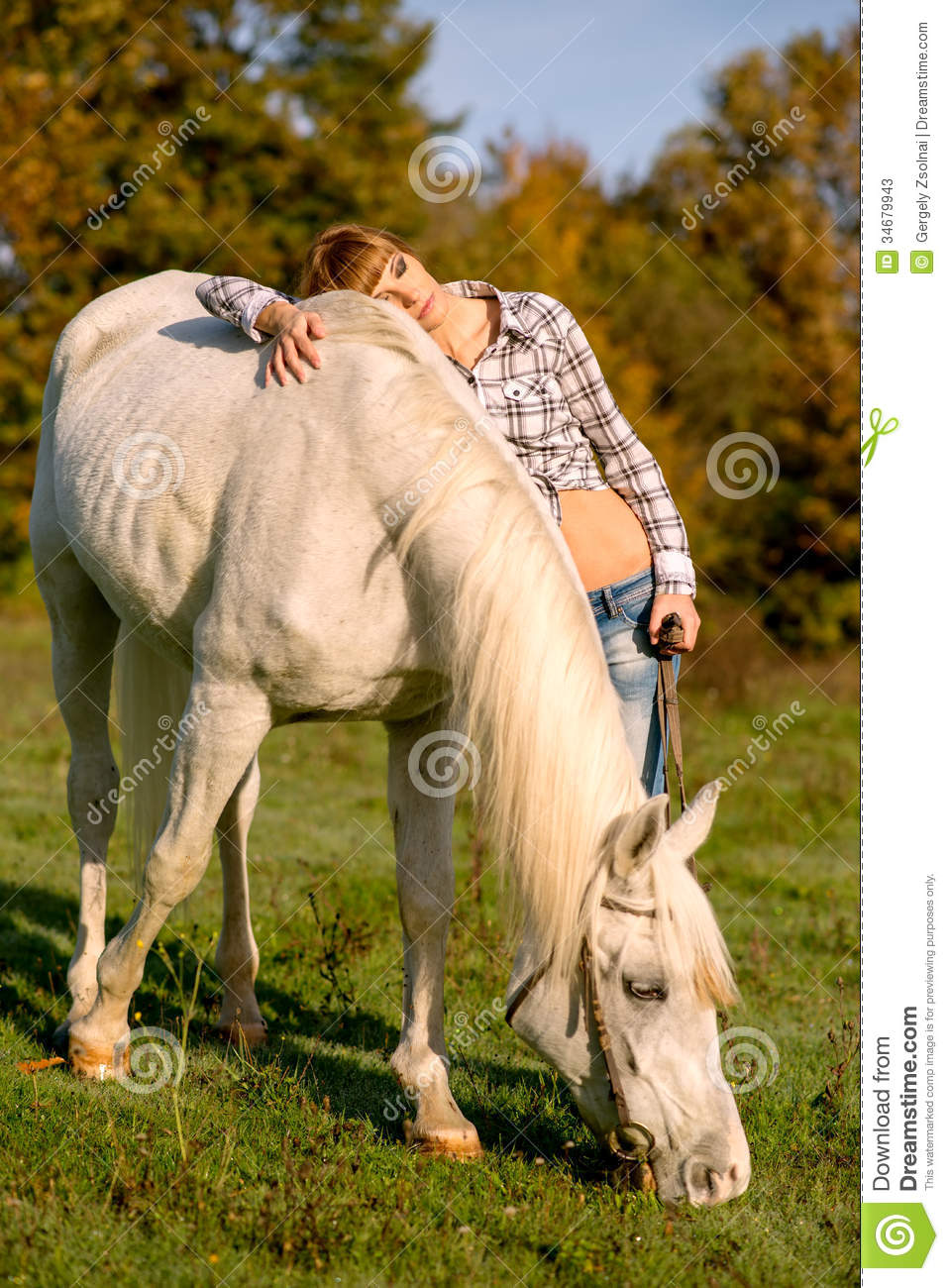 portrait of a white horse and woman stock image
