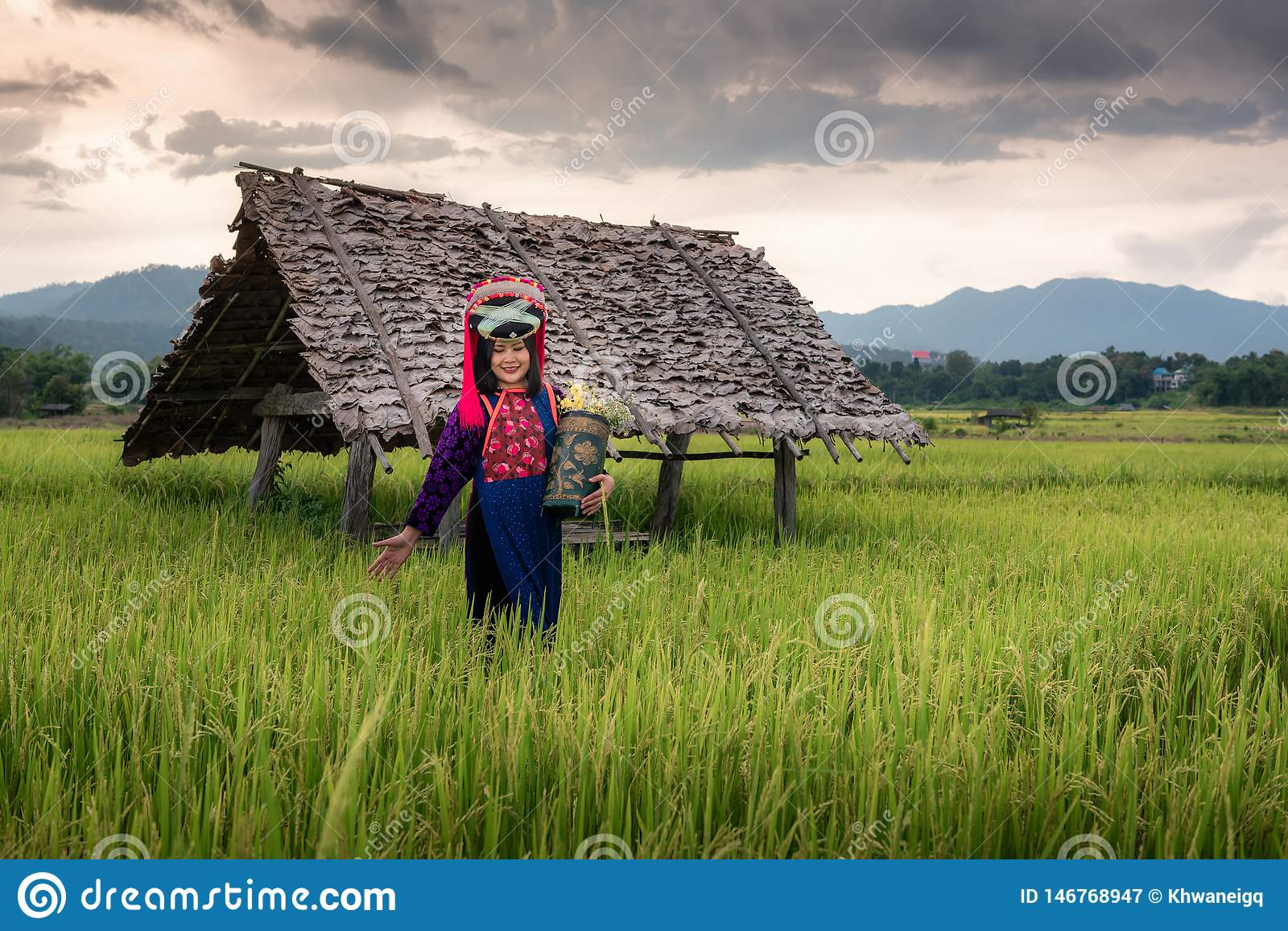 Portrait of Woman Tribal Lisu in Traditional Dress and Jewelry Costume in Rice Fields., Lifestyle of Hill Tribe Girl in The North