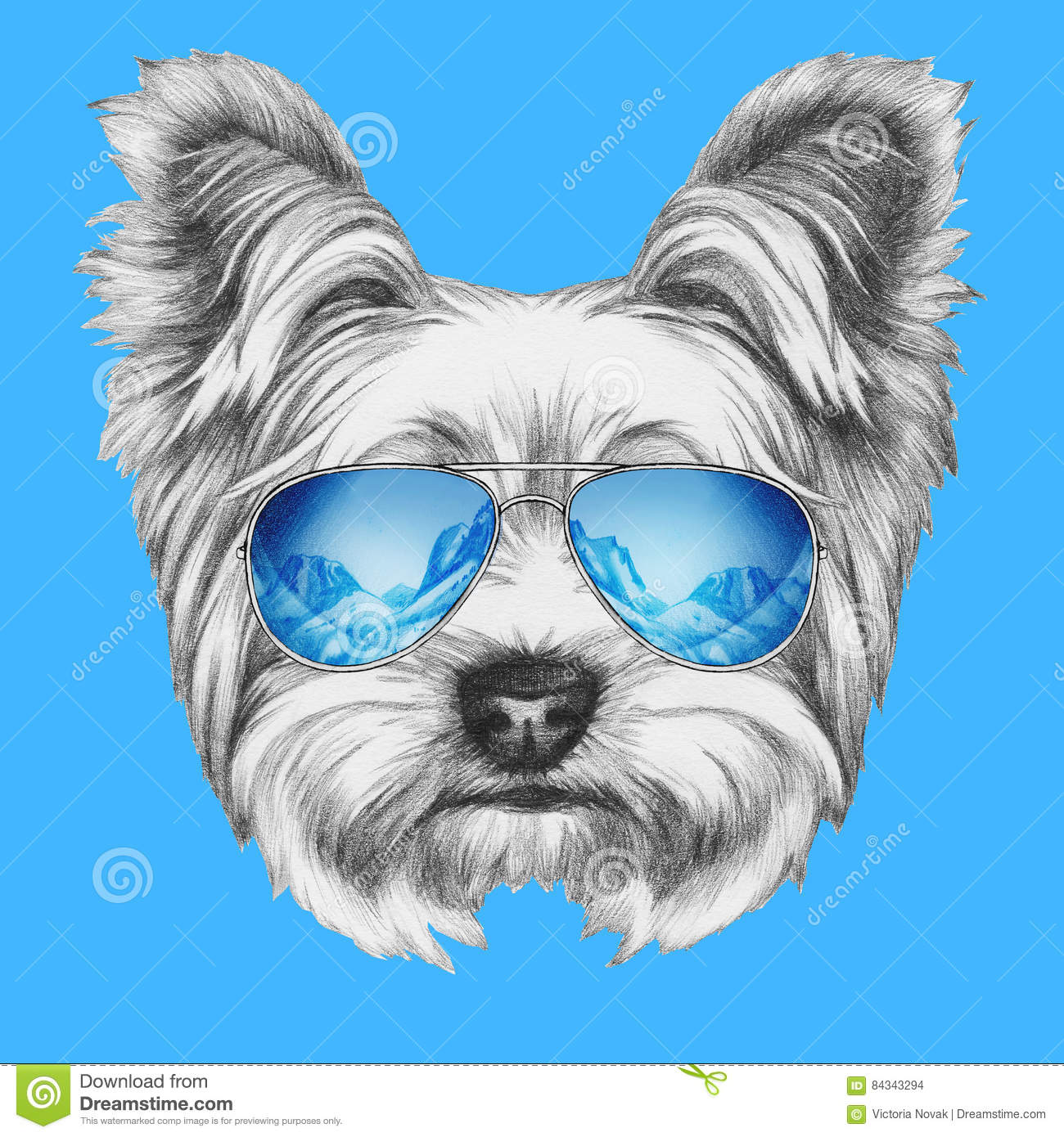 Portrait Of Yorkshire Terrier Dog With Mirror Sunglasses Stock