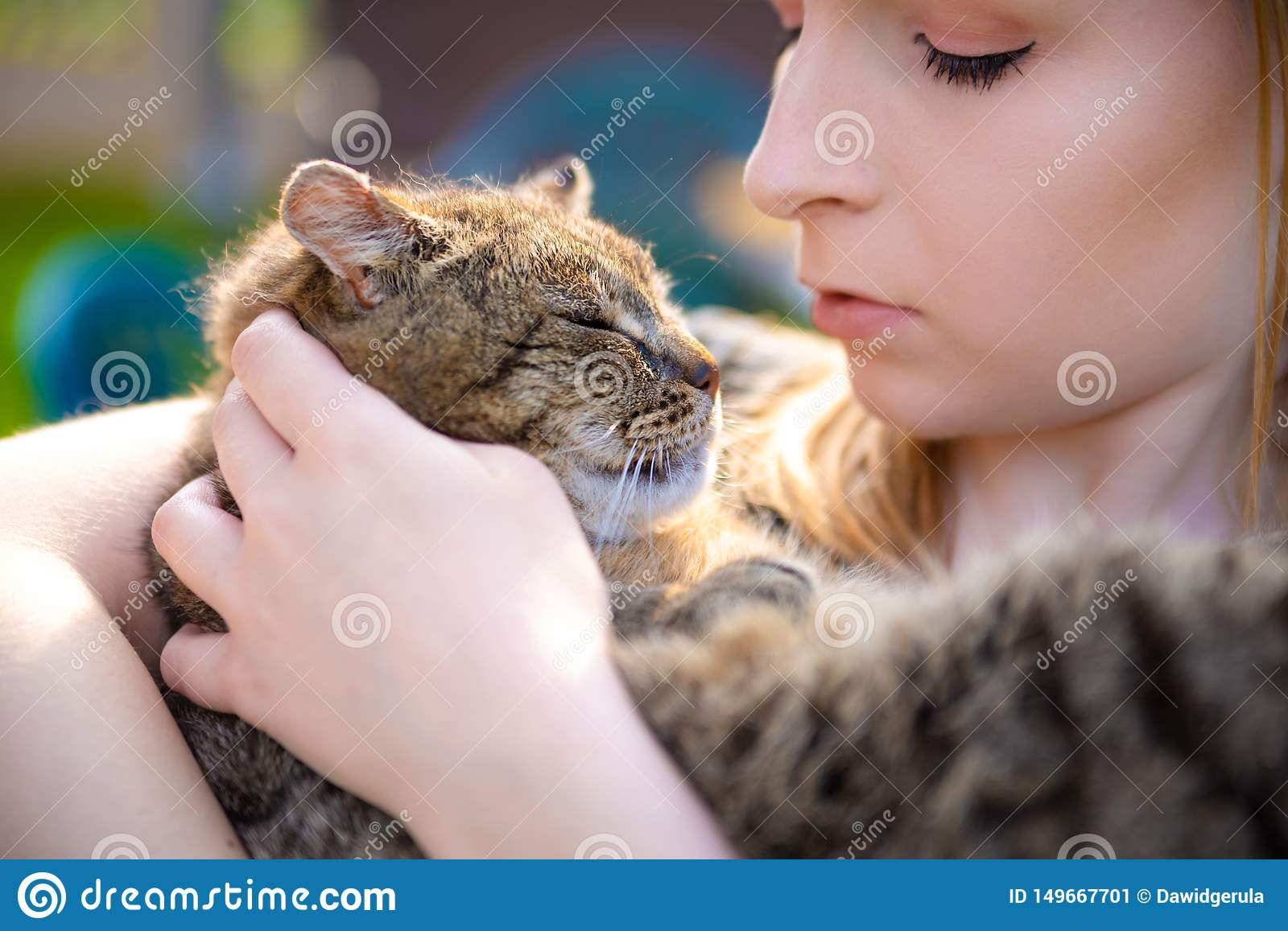 Portrait of young woman holding a cat in her arms. Pretty lady holding little sweet, adorable kitten