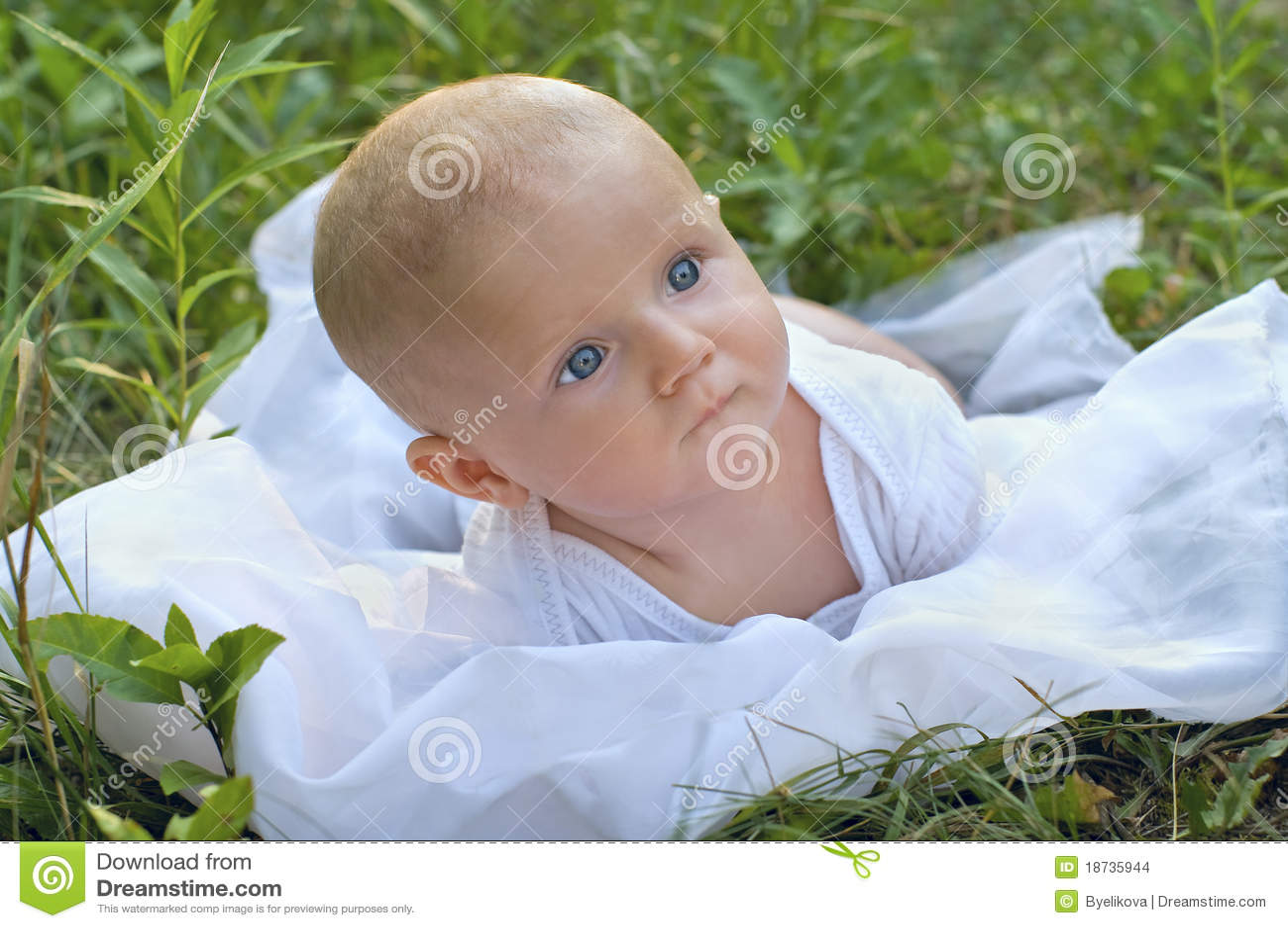 Portraite природы младенца
