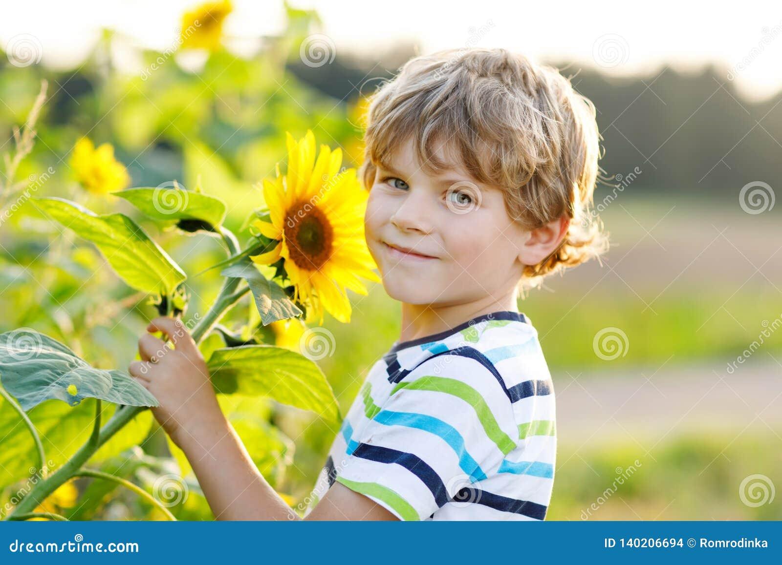 Portret piękna mała blondynu dzieciaka chłopiec na lato słonecznika polu outdoors Śliczny preschool dziecko ma zabawę na ciepłym