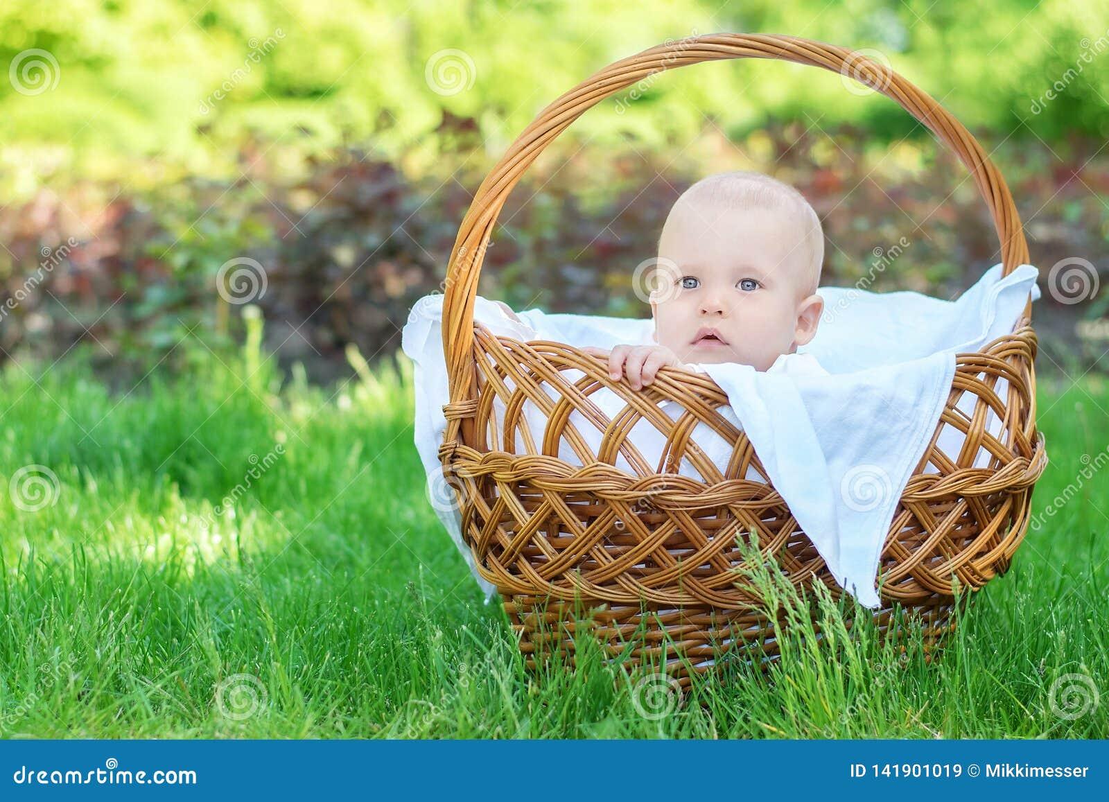 Portret rozważny dziecka dziecka obsiadanie w łozinowego kosza pozycji na trawa gazonie plenerowym szczęśliwy dzieciństwa pojęcie