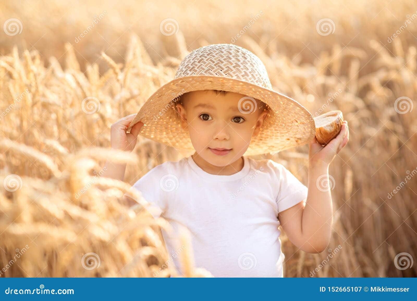 Portret van weinig peuterkind in strohoed die zich op tarwegebied die bevinden onder gouden aren brood van brood houden De zomer