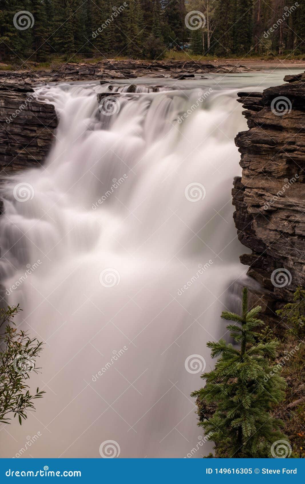 Portreta widok można Athabasca siklawa w Banff parku narodowym, Kanada potok gniesie przez przerwy wewnątrz woda