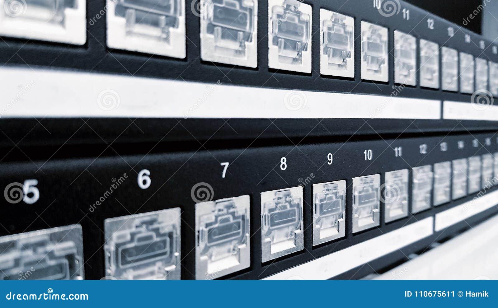 Ports de tableau de connexions de Cat5e