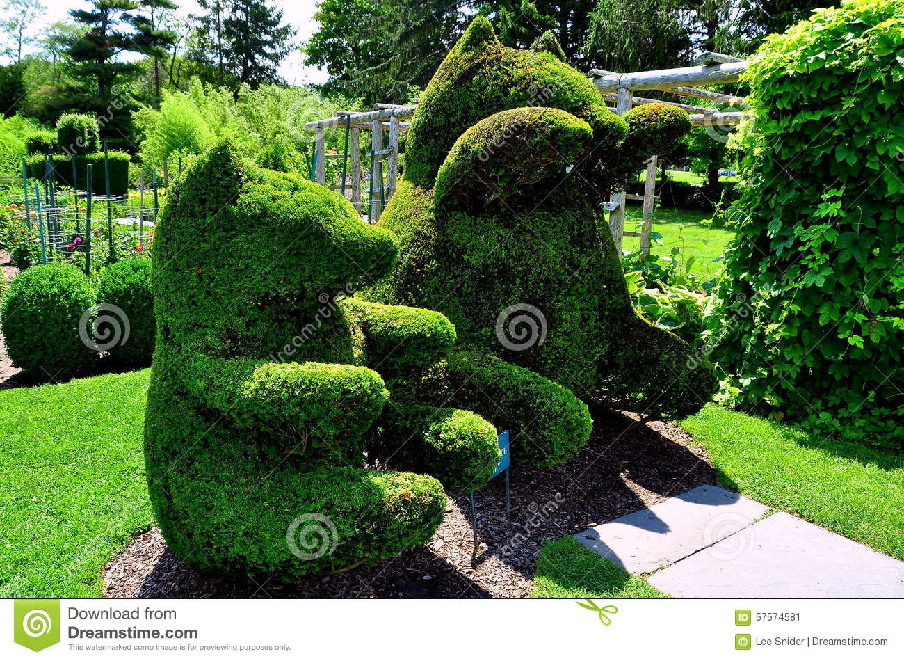 7 975 Green Topiary Photos Free Royalty Free Stock Photos From Dreamstime
