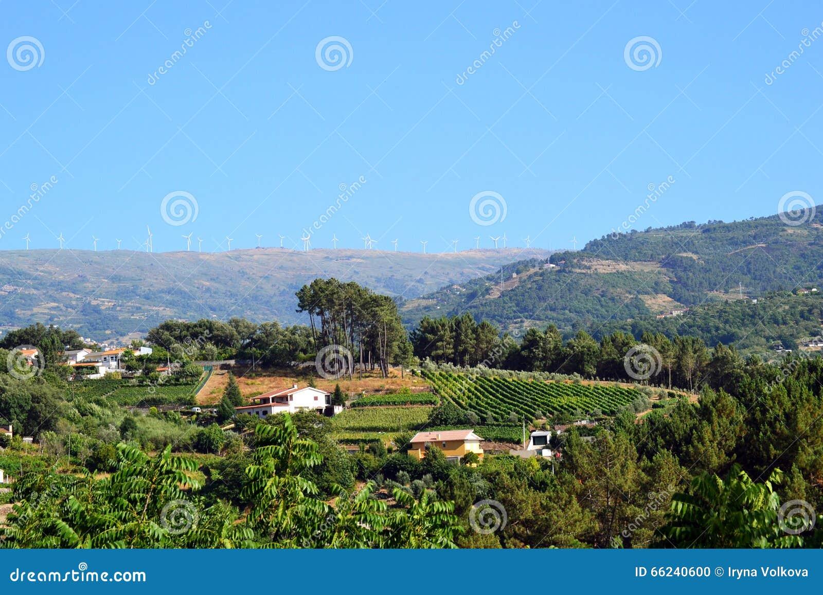 Portugalia krajobraz z silnikami wiatrowymi