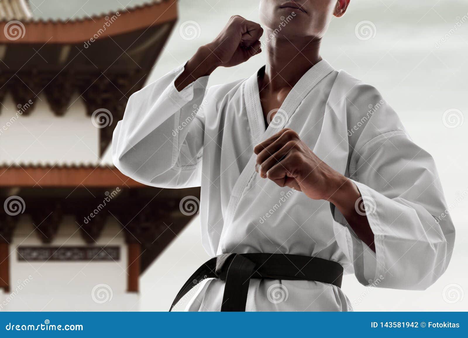 Pose de combat de combattant d art martial