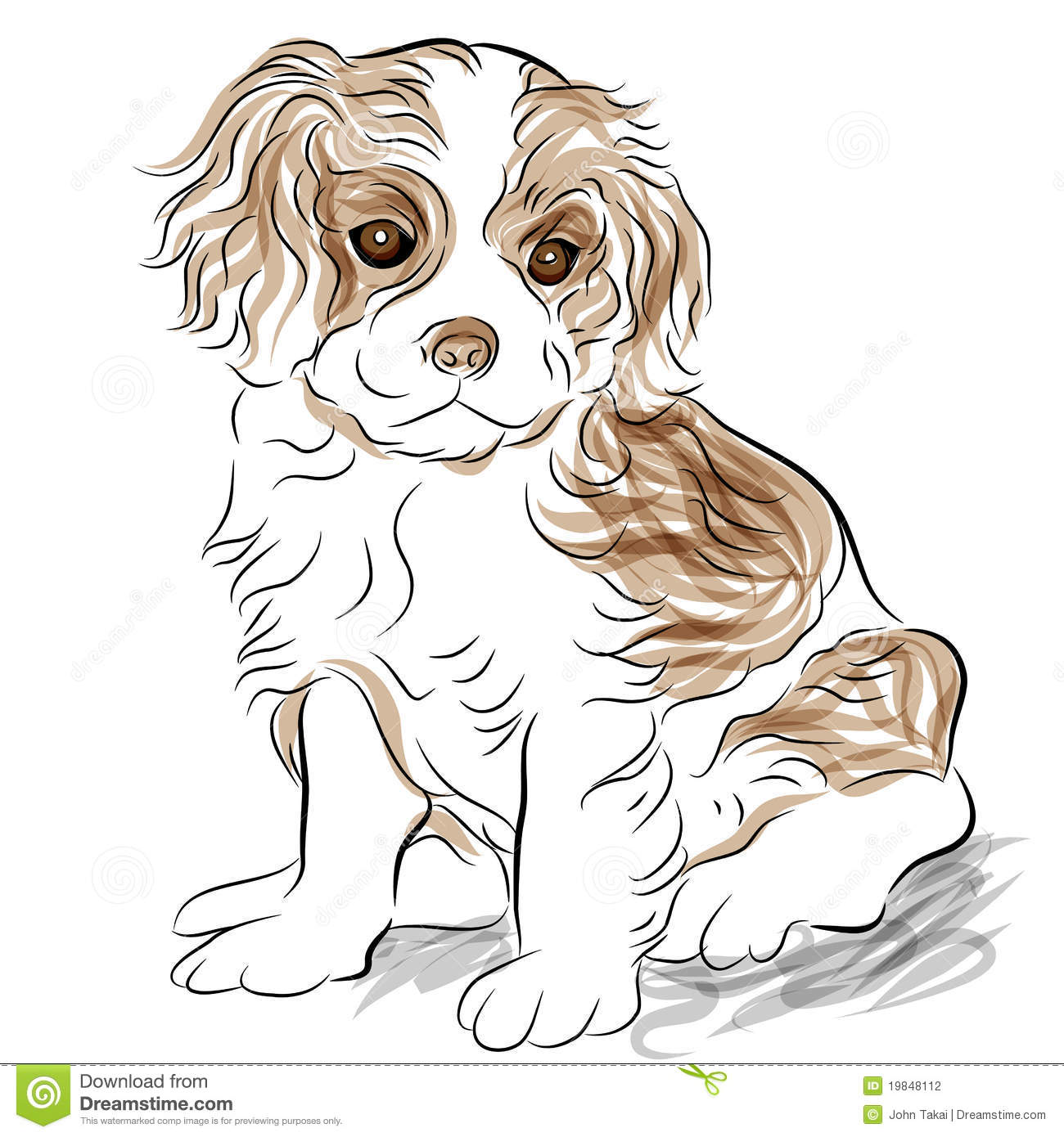 Posed Cavalier King Charles Spaniel Puppy Dog Stock Vector