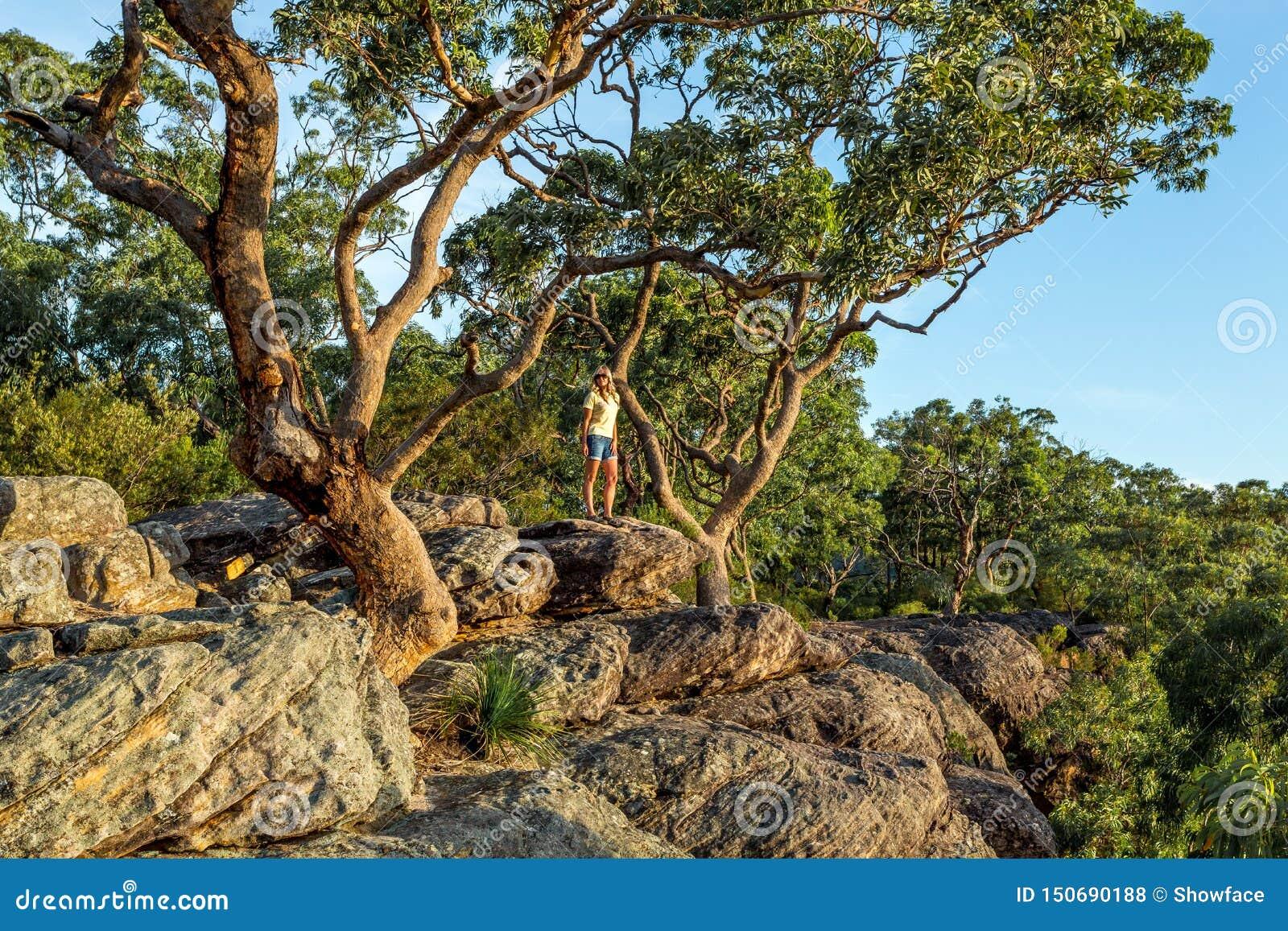 Position de femme sous de grands arbres de gomme sur le bord de caniveau de montagne
