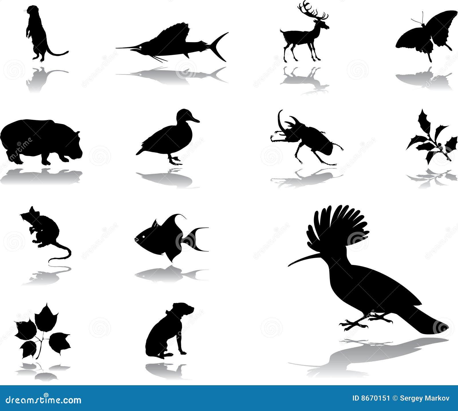 Positionnement de nature de 98 graphismes