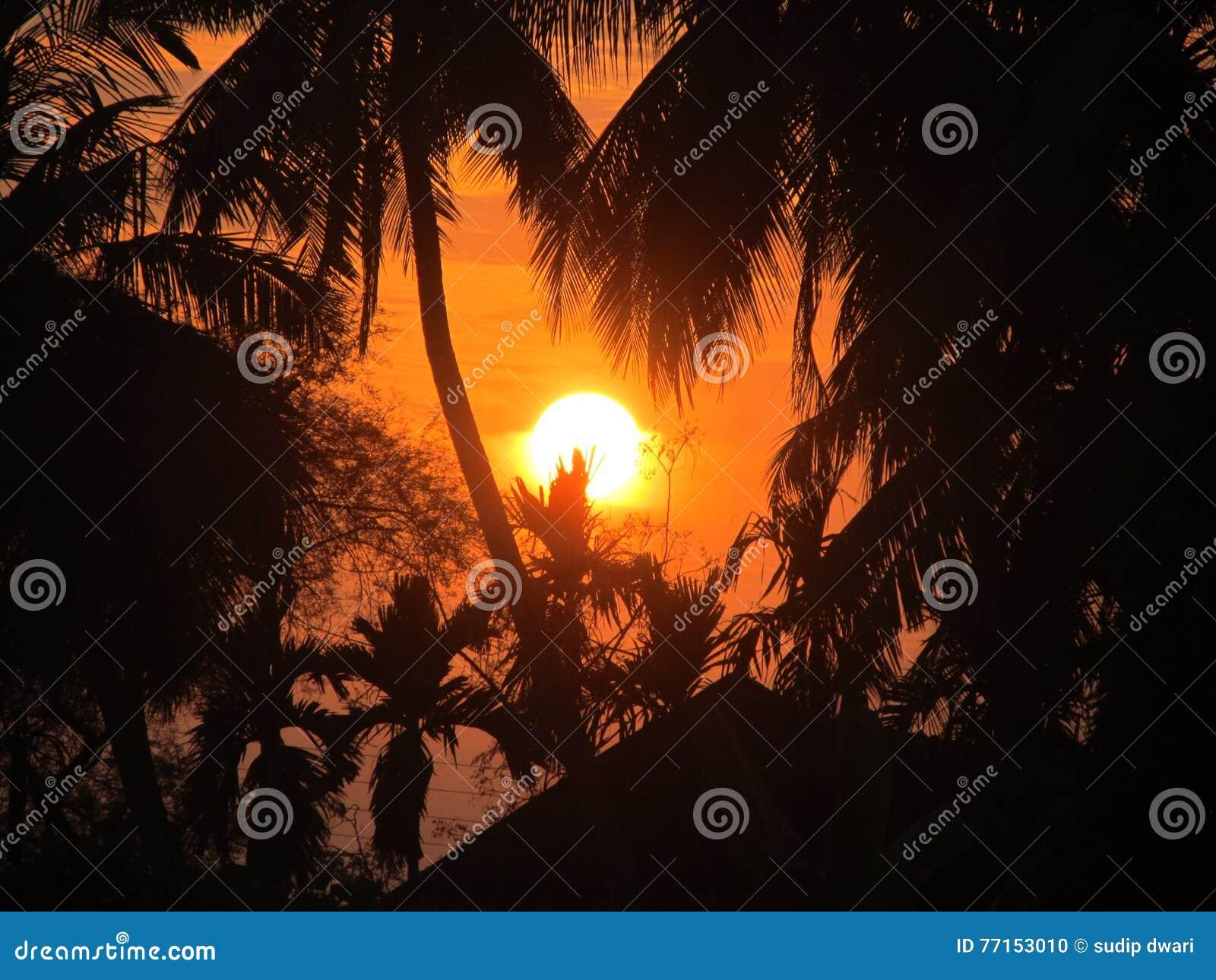 Positionnement de Sun