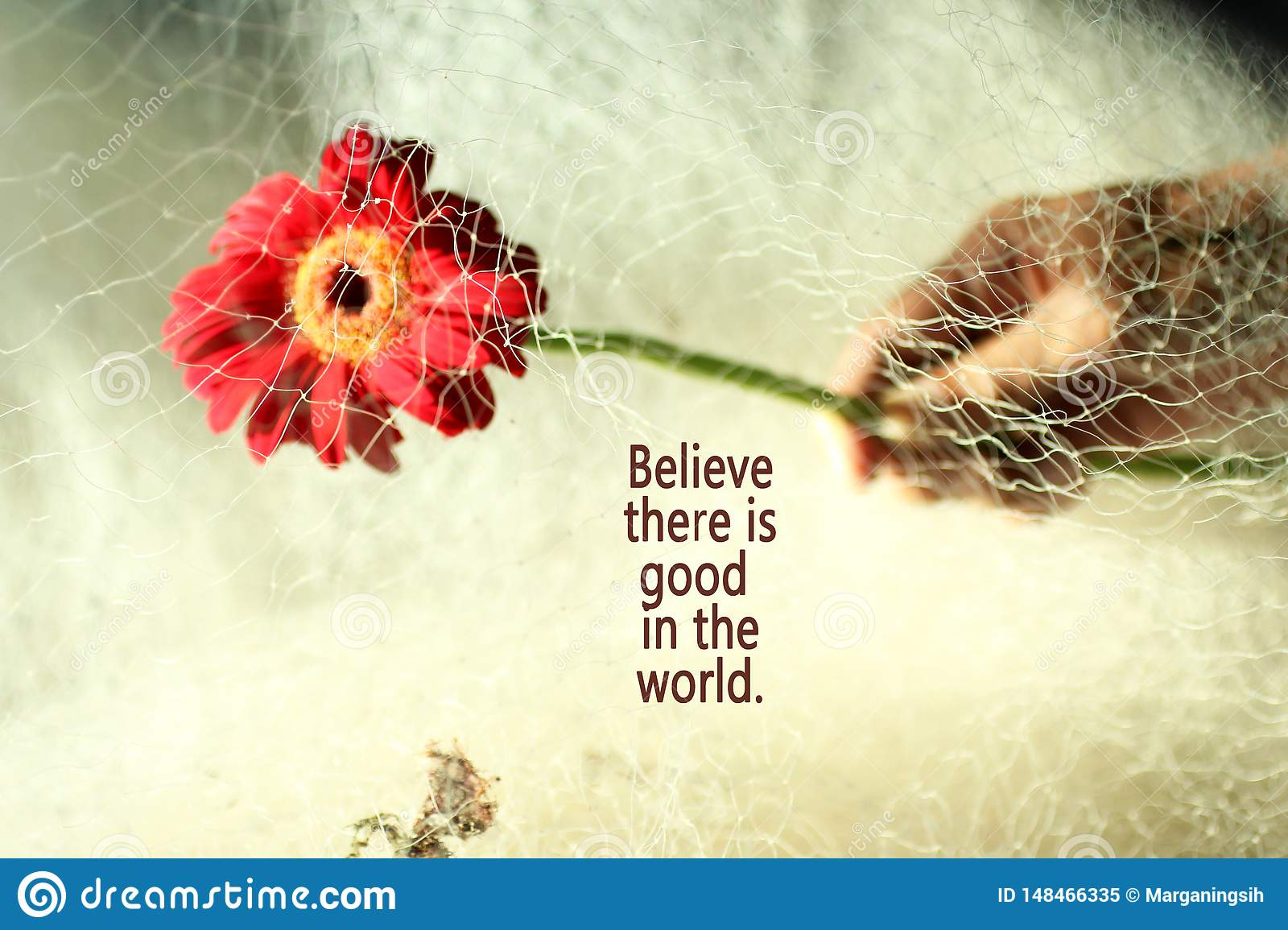 Inspirational Quote- Believe There Is Good In The World ...