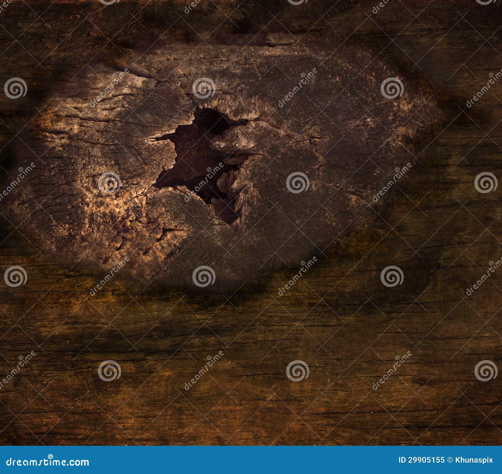 Posse do nó da casca na textura da árvore