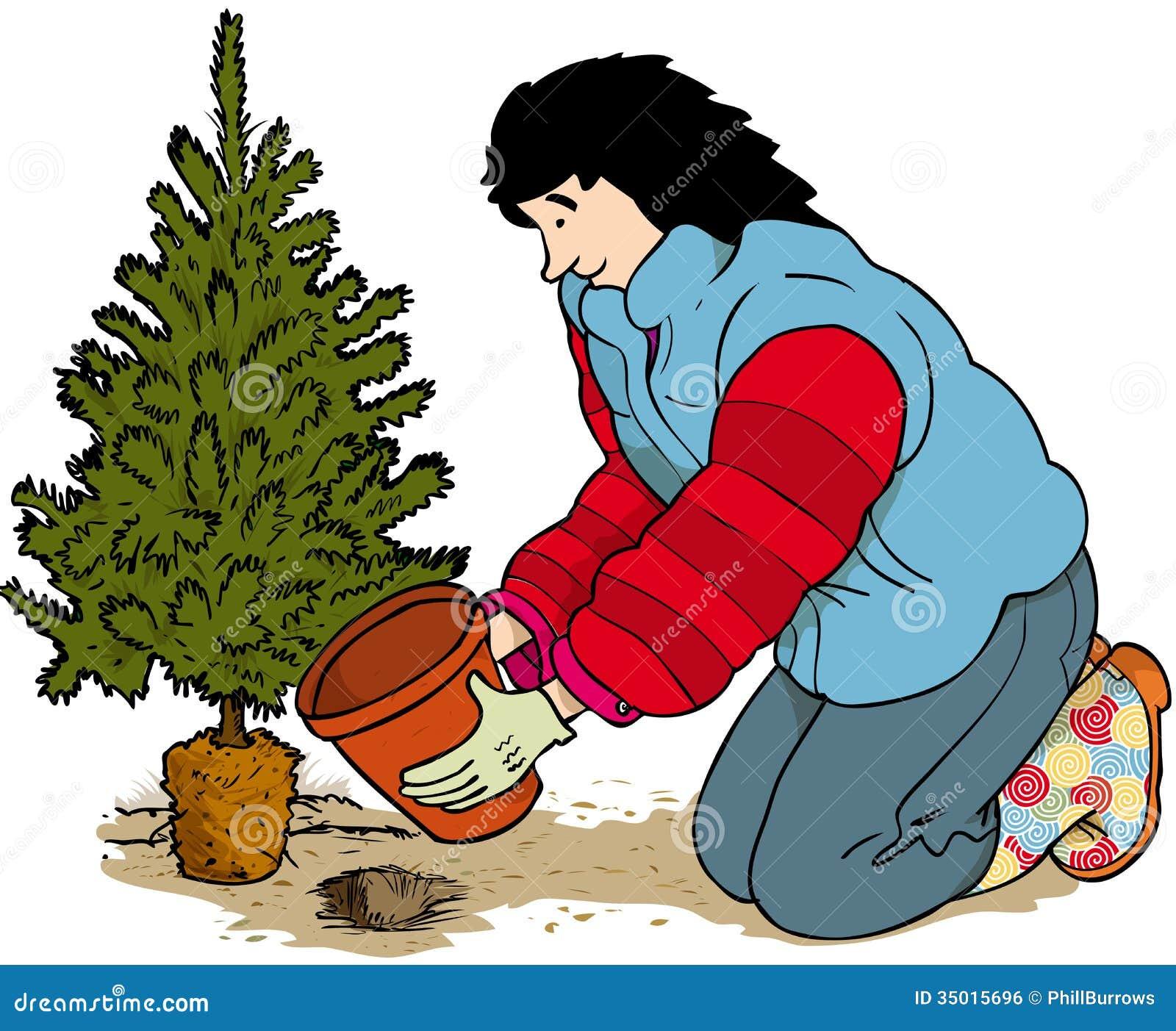 Post Christmas Royalty Free Stock Image - Image: 35015696