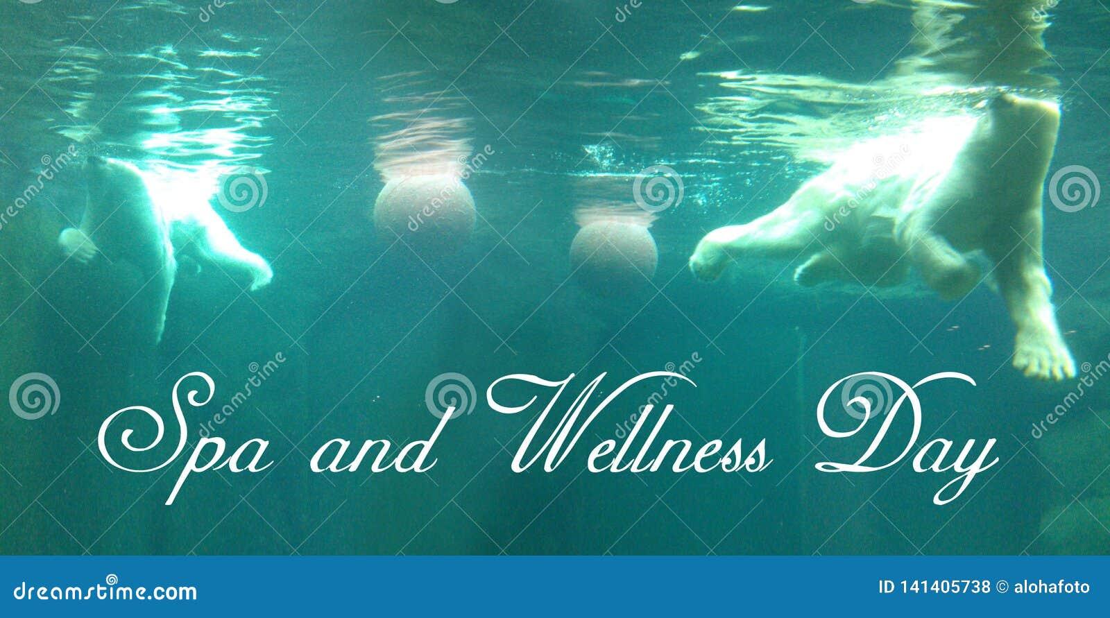 Postal con dos osos polares brillantes que nada con dos bolas subacuáticas en aguas de una turquesa