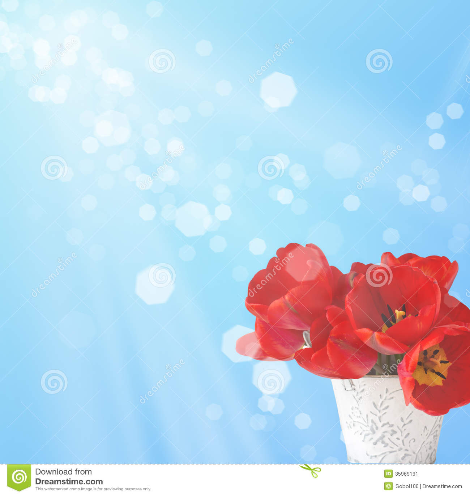 Postal con los tulipanes elegantes de las flores