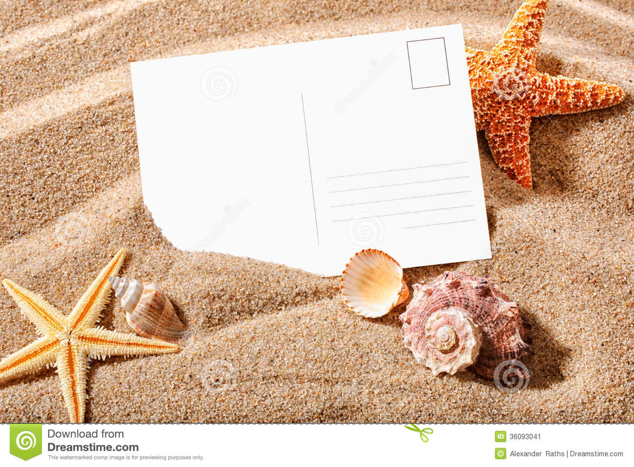 Holiday beach concept with shells, sea stars and an blank postcard.