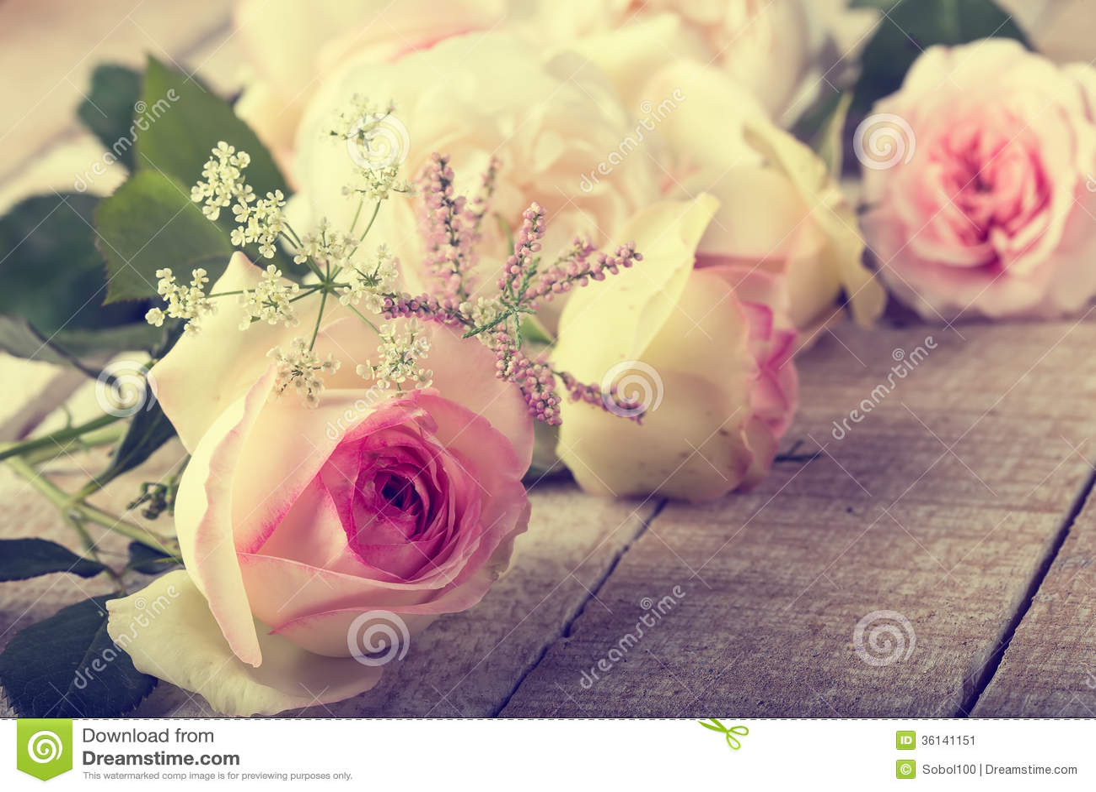 Postcard With Elegant Flowers Stock Image Image 36141151