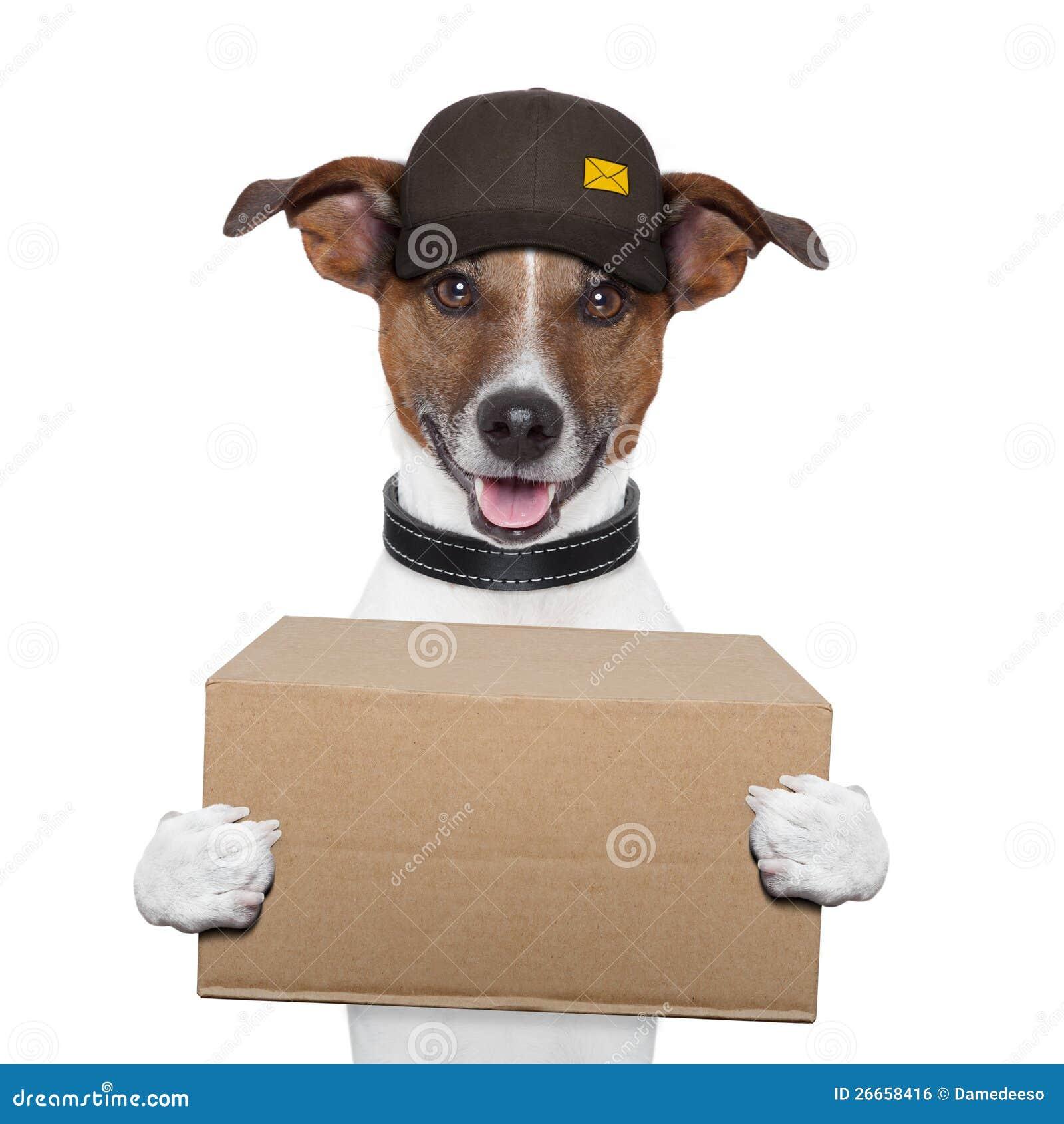 Poste de la salida del perro