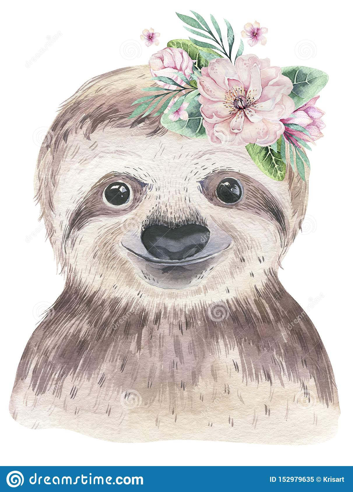 A poster with a baby sloth. Watercolor cartoon sloth tropical animal illustration. Jungle exotic summer print.