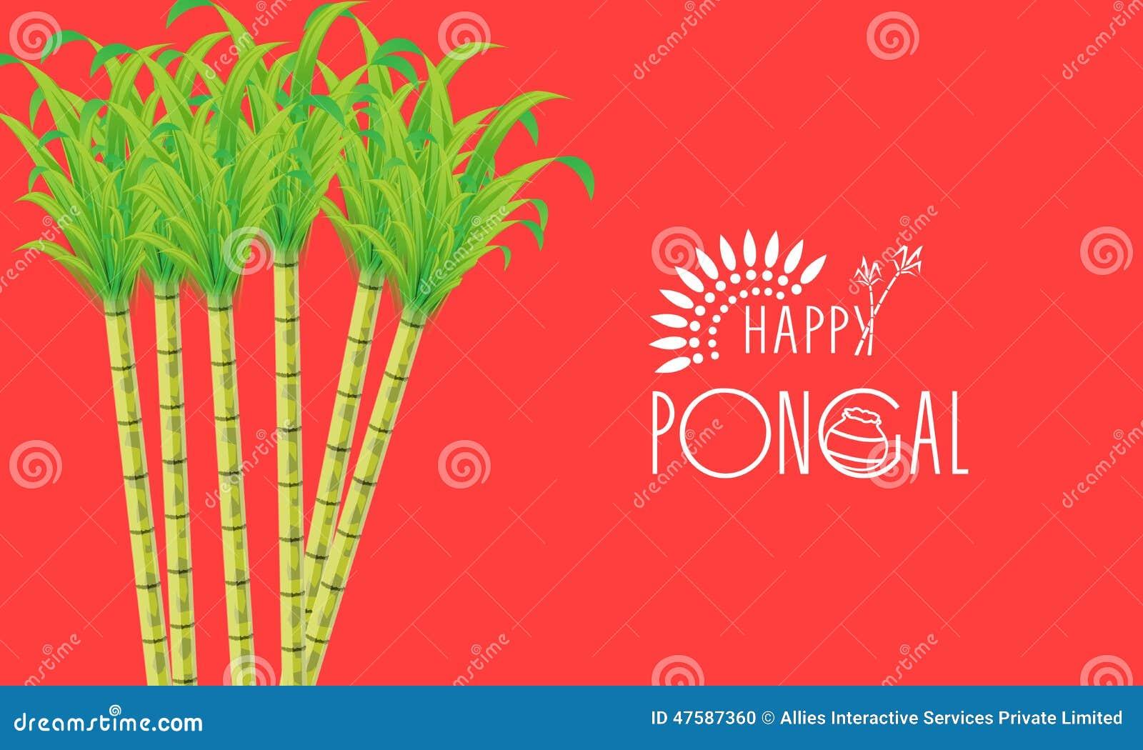 Poster Or Banner Design For Happy Pongal Festival